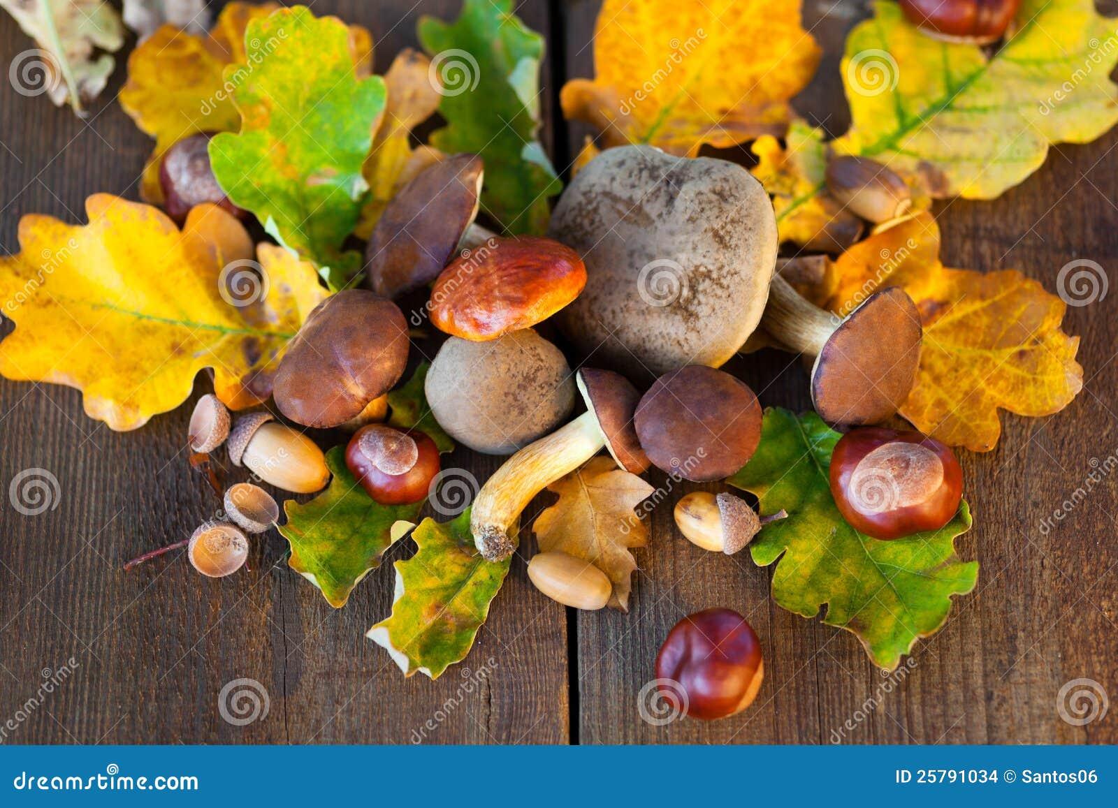 Herfst decoratie stock afbeeldingen afbeelding 25791034 - Decoratie afbeelding ...