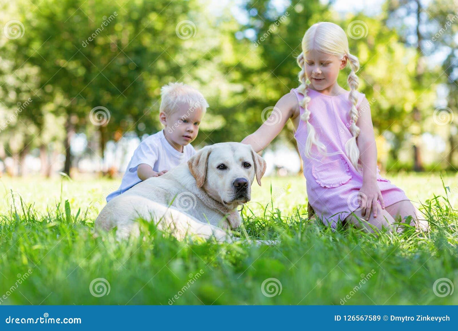 Hermano agradable y hermana que pasan un día con un perro
