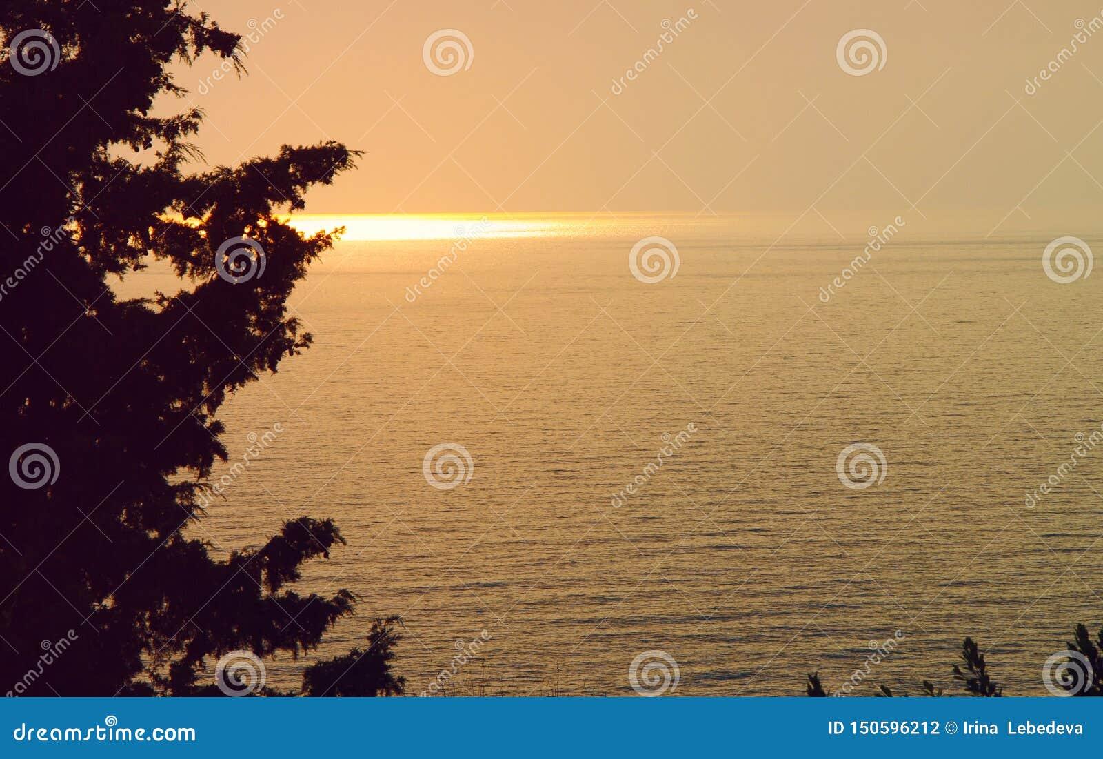 Hermosa vista de la puesta del sol y de la trayectoria soleada de los rayos del sol poniente