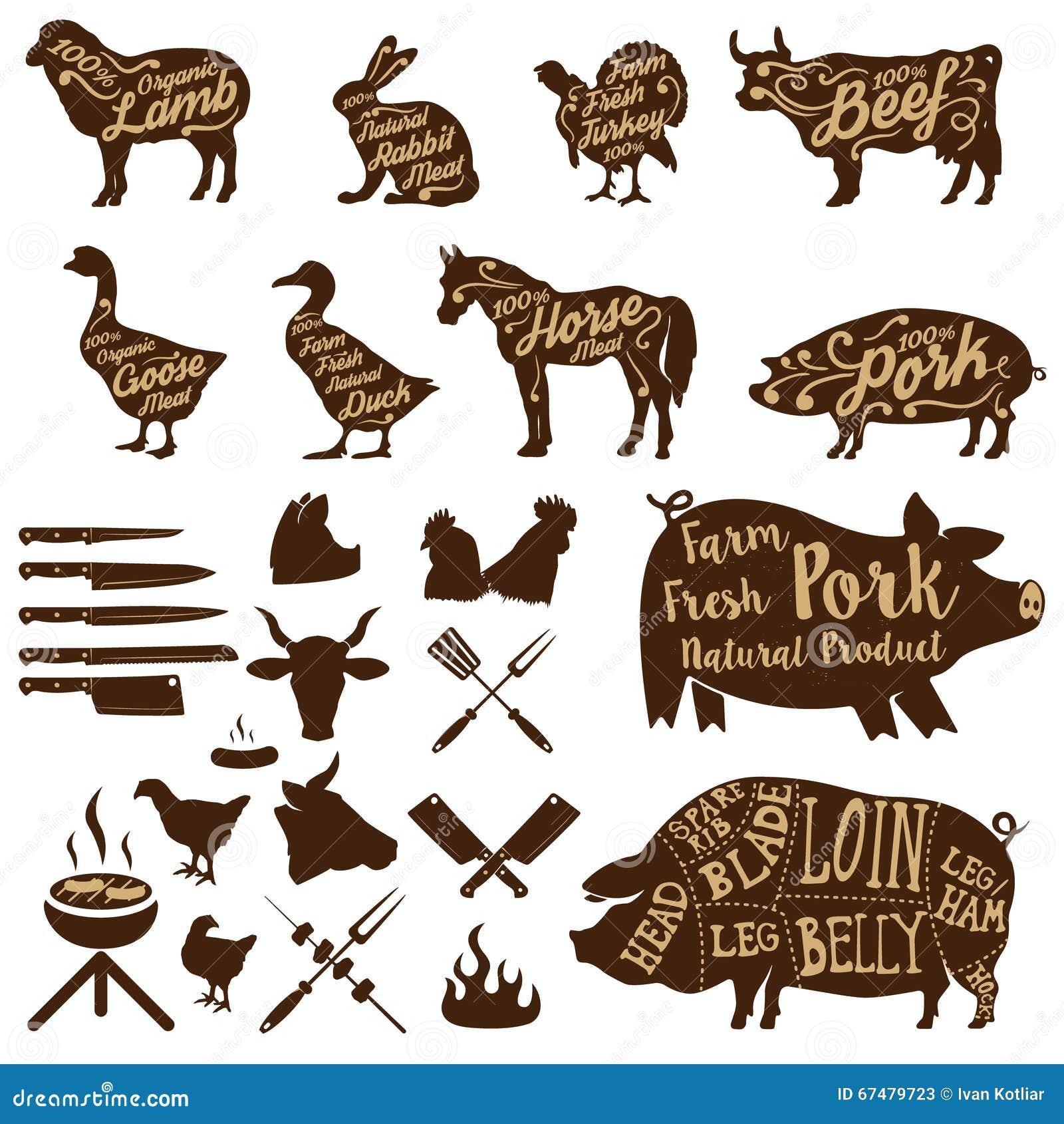Herramientas del carnicero animales del campo cerdo fresco for Herramientas de campo
