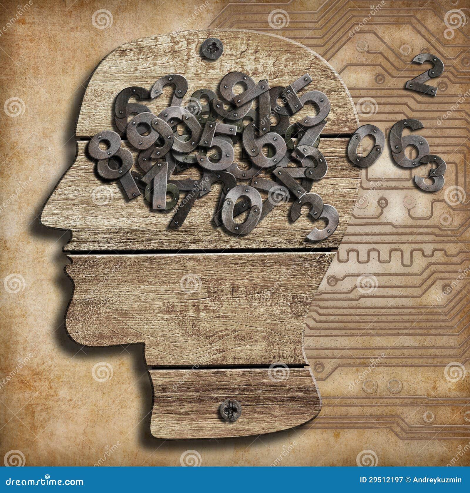 Hersenen en aantallen