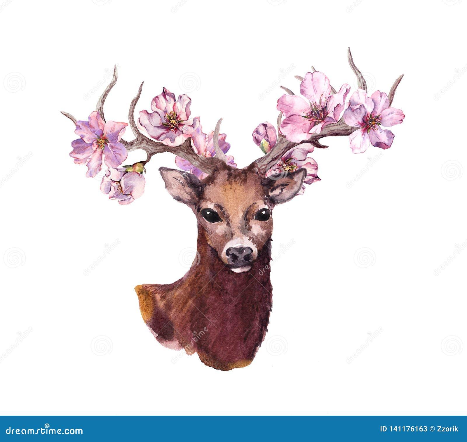 Herten dierlijk hoofd met roze de bloesembloemen van de de lentekers in hoornen watercolor