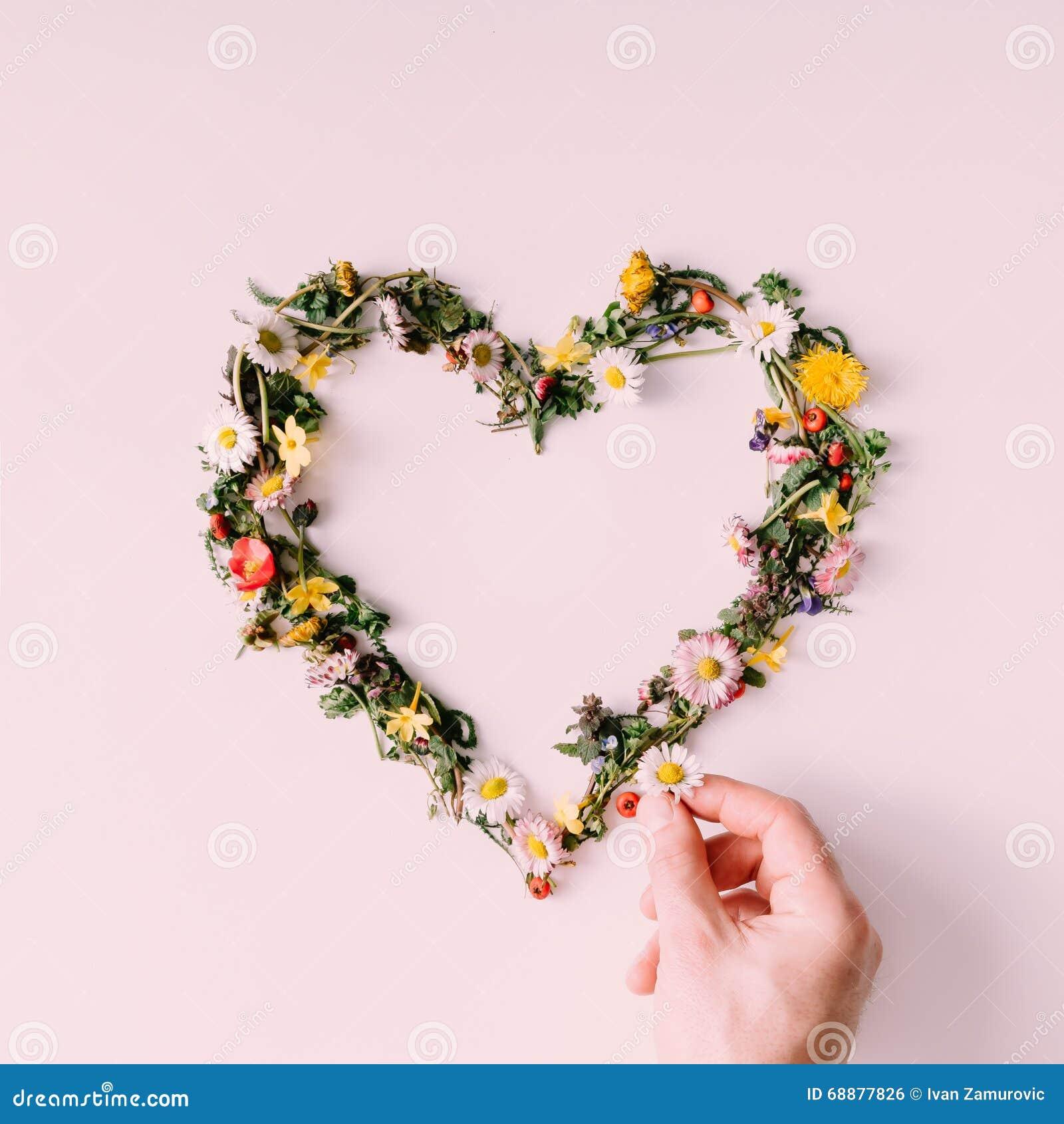 Herz Der Natur Zu Küssen Mann Und Frau Ungefähr Flache