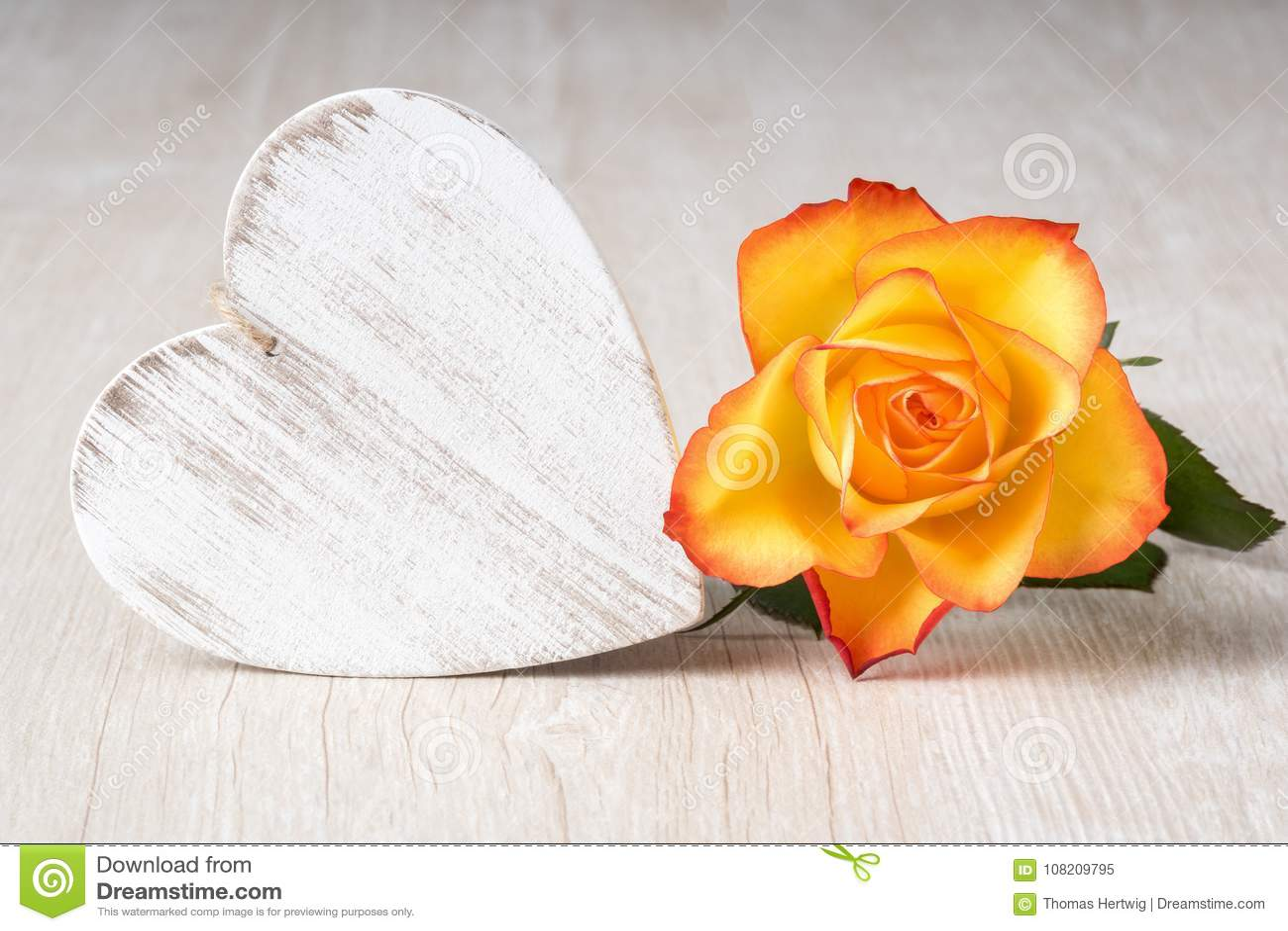 Herz und Rose Flowers auf rustikaler Tabelle - lieben Sie Konzept