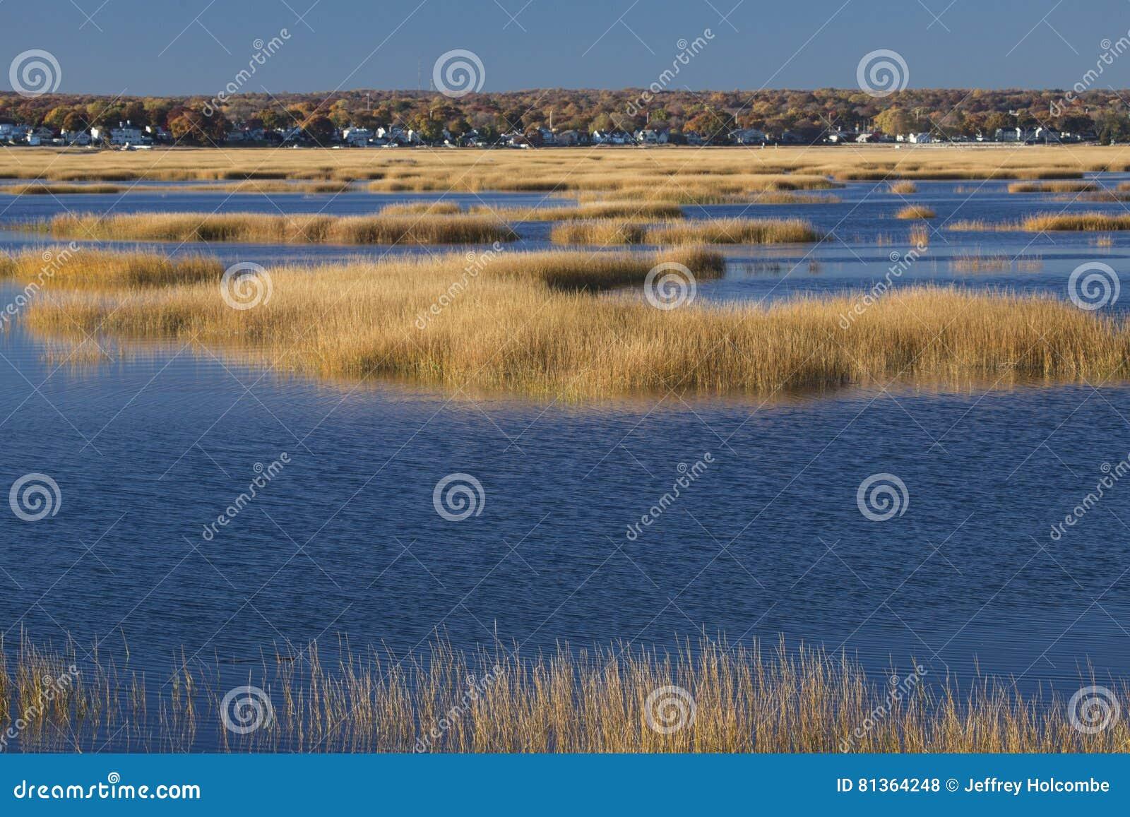 Herzenswärme des Sonnenuntergangs auf Sumpf an Milford-Punkt, Connecticut