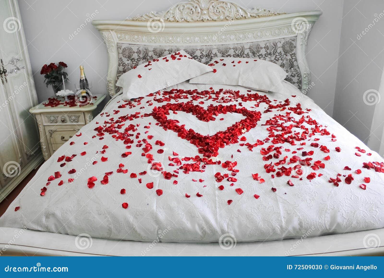 Het bed met echte rood nam bloemblaadjes toe