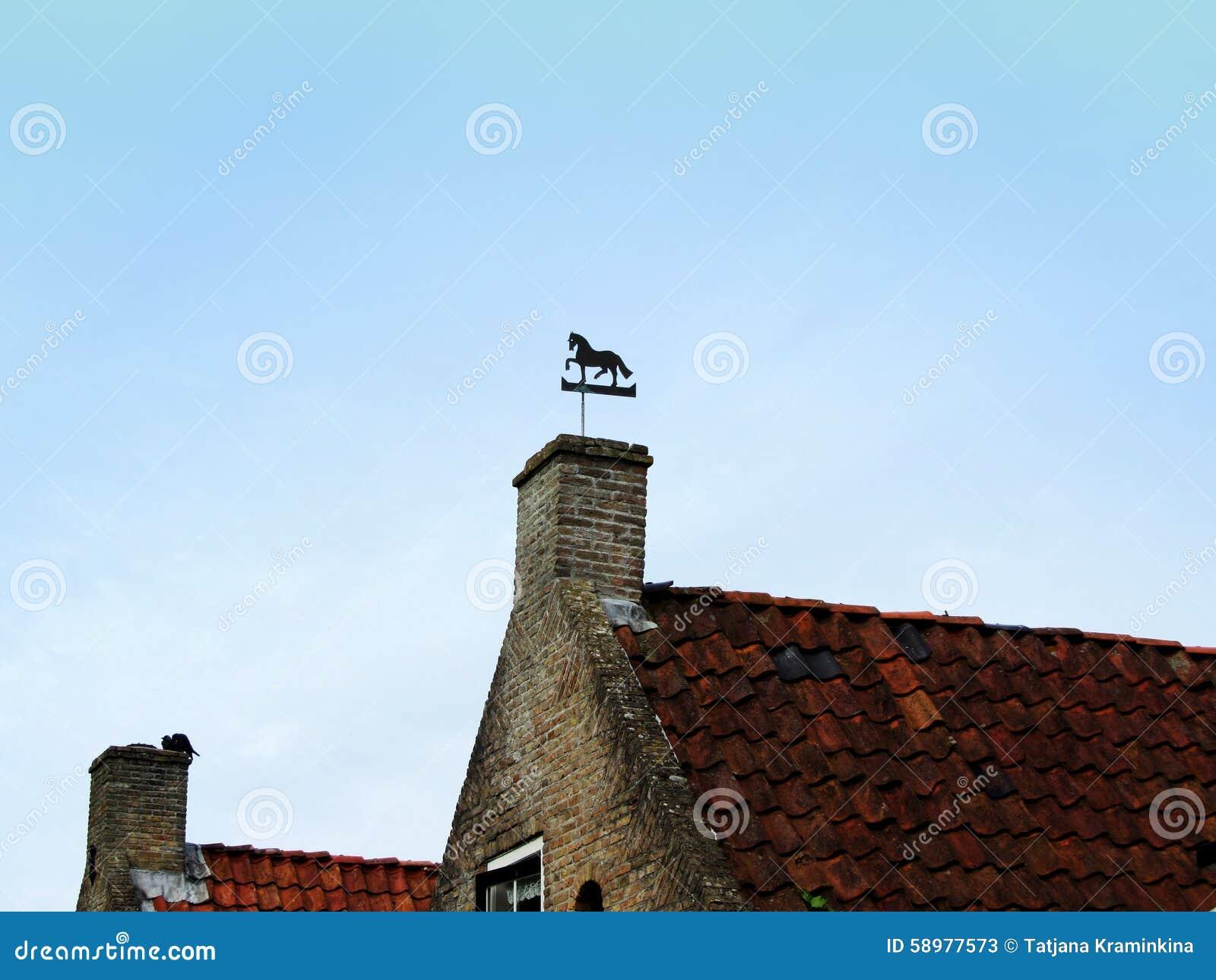 Het beeld van vane vertical van het paardweer bovenop huis stock foto afbeelding 58977573 - Beeld van eigentijds huis ...