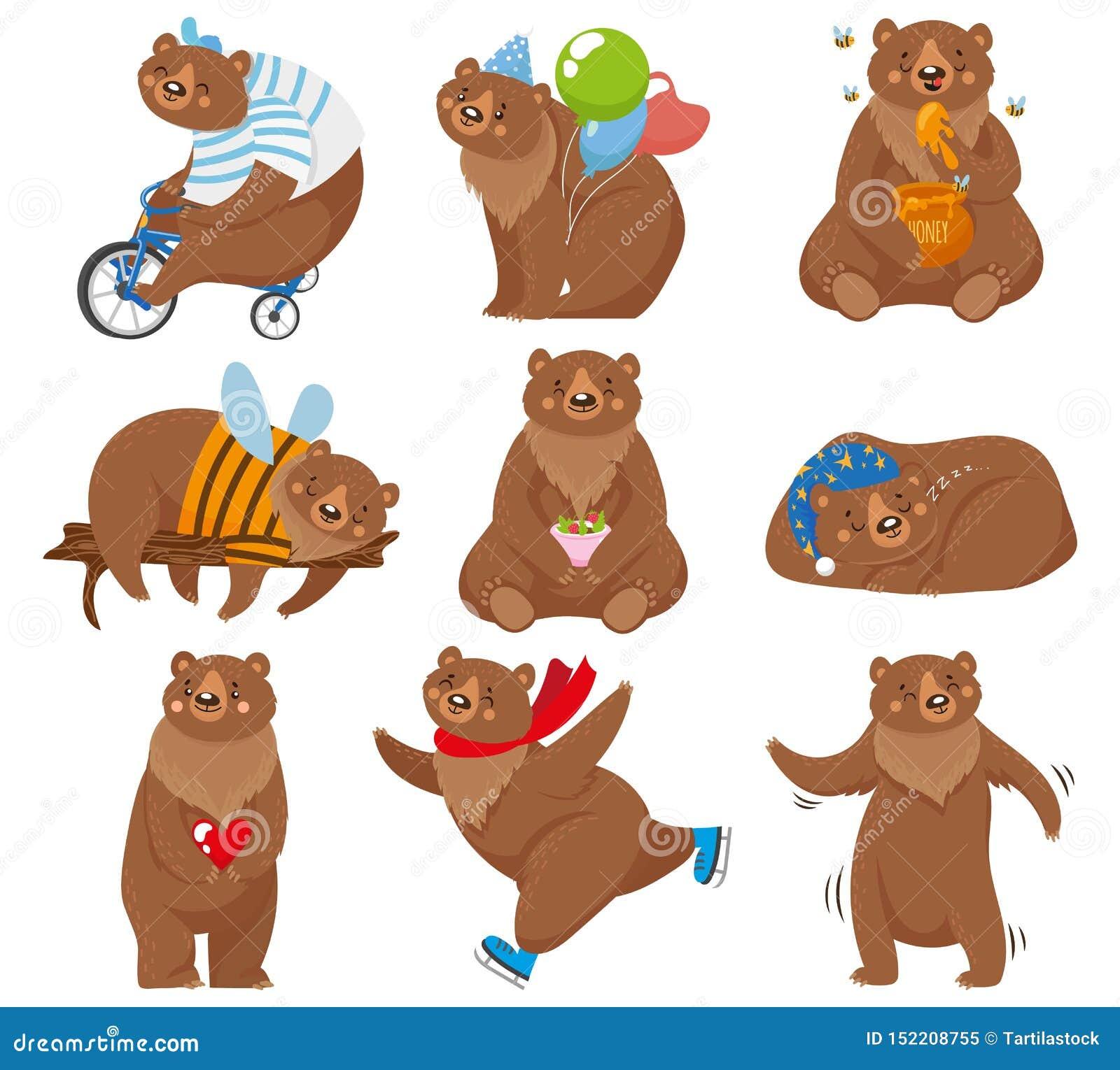 Het beeldverhaal draagt Gelukkig draag, eet de grizzly honing en bruin draag karakter in grappig stelt geïsoleerde vectorillustra
