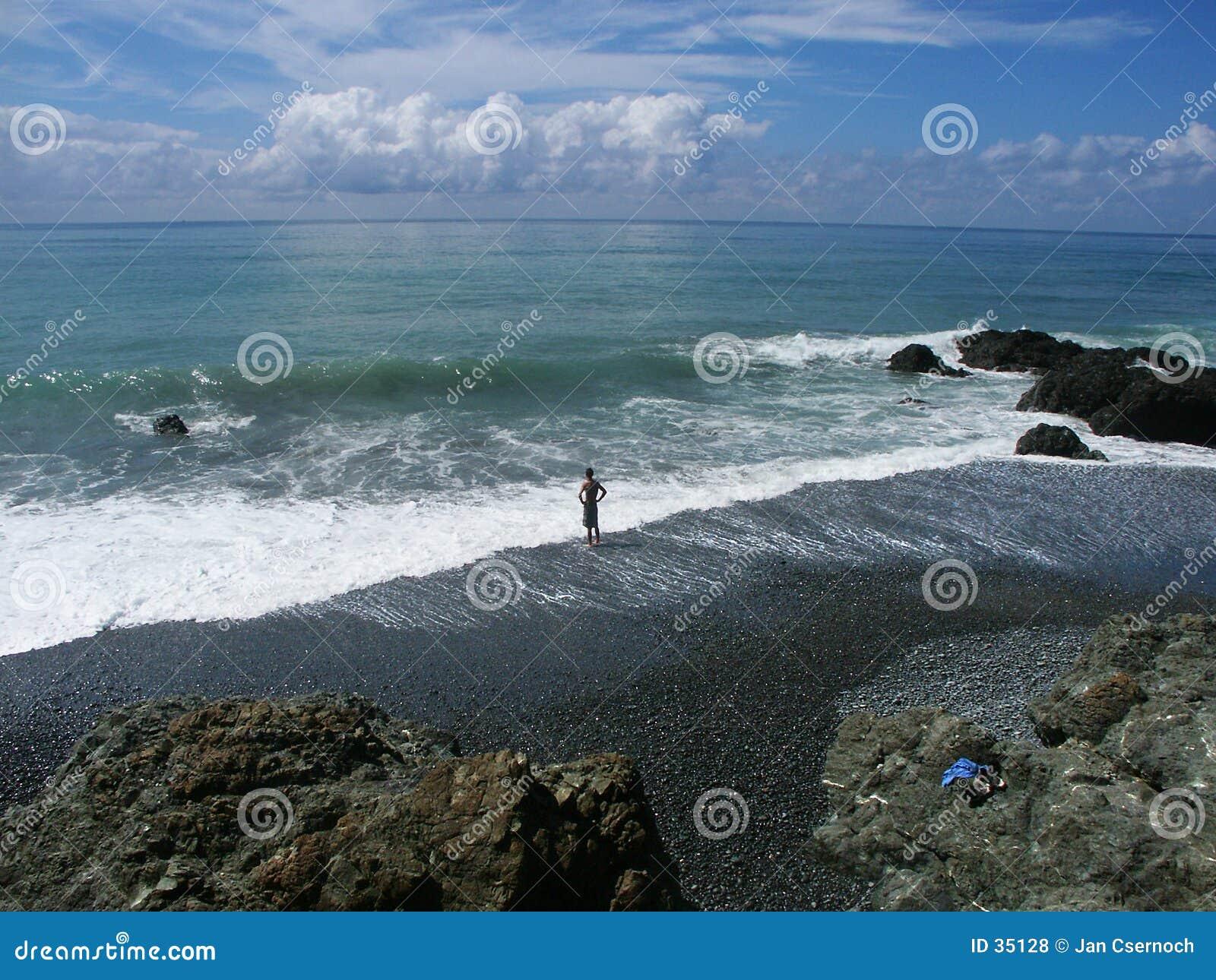 Het beschouwen als zwemt in de oceaan