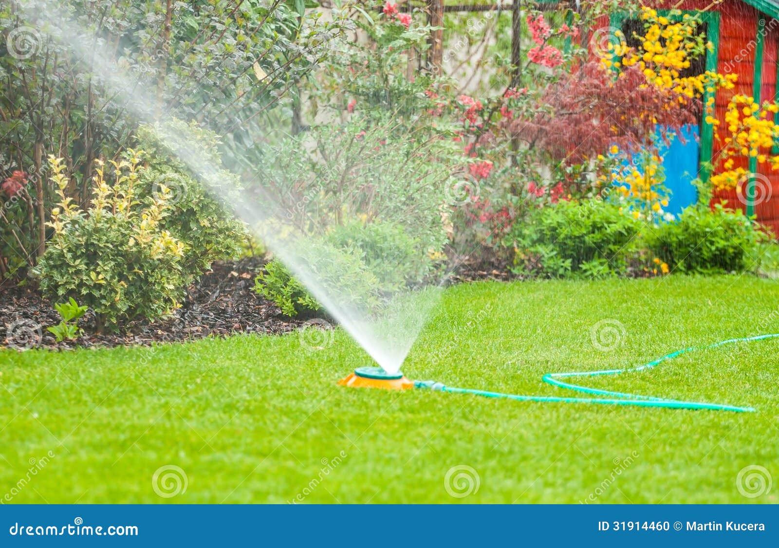 Het bespuitende water van de watersproeier over groen gras in de tuin stock foto afbeelding - Groen behang van het water ...