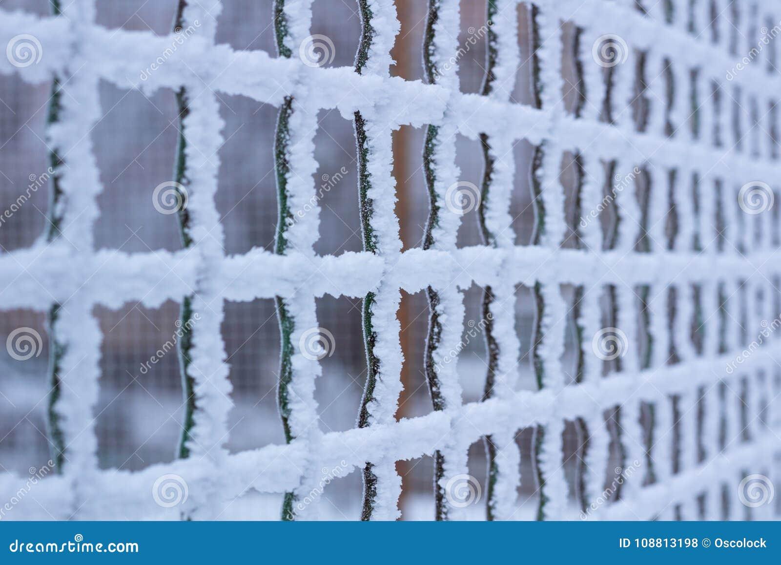 Het bevroren netto die net van het metaalijzer met vorst in de winter wordt behandeld