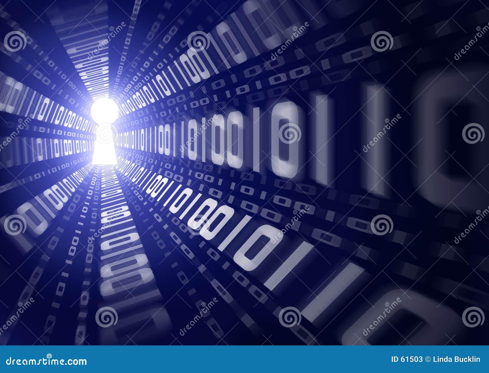 Het binaire Lek van Gegevens