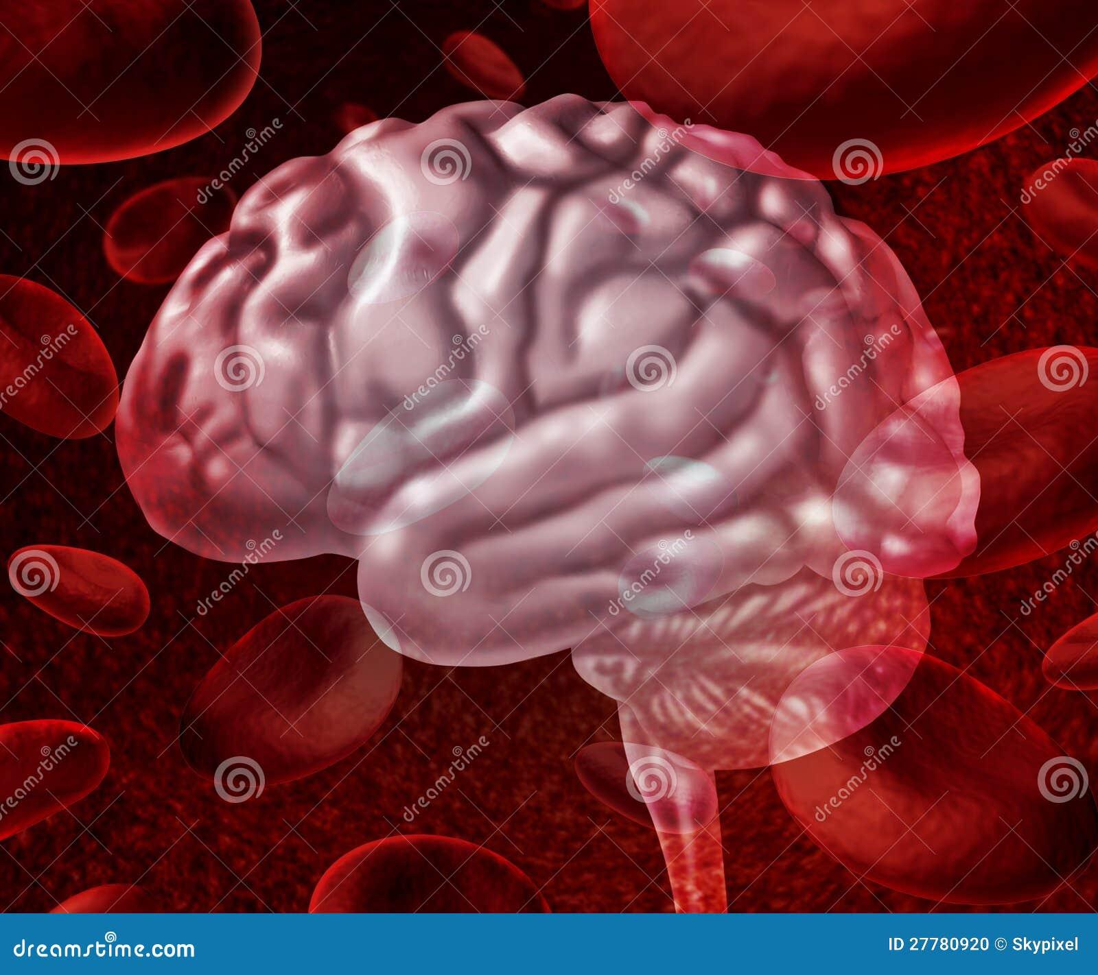 Het Bloed van hersenen