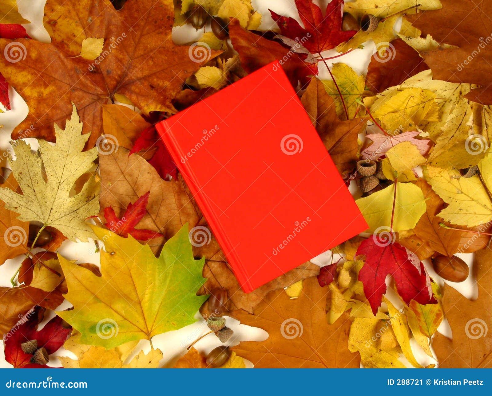 Het boek van de herfst (serie)