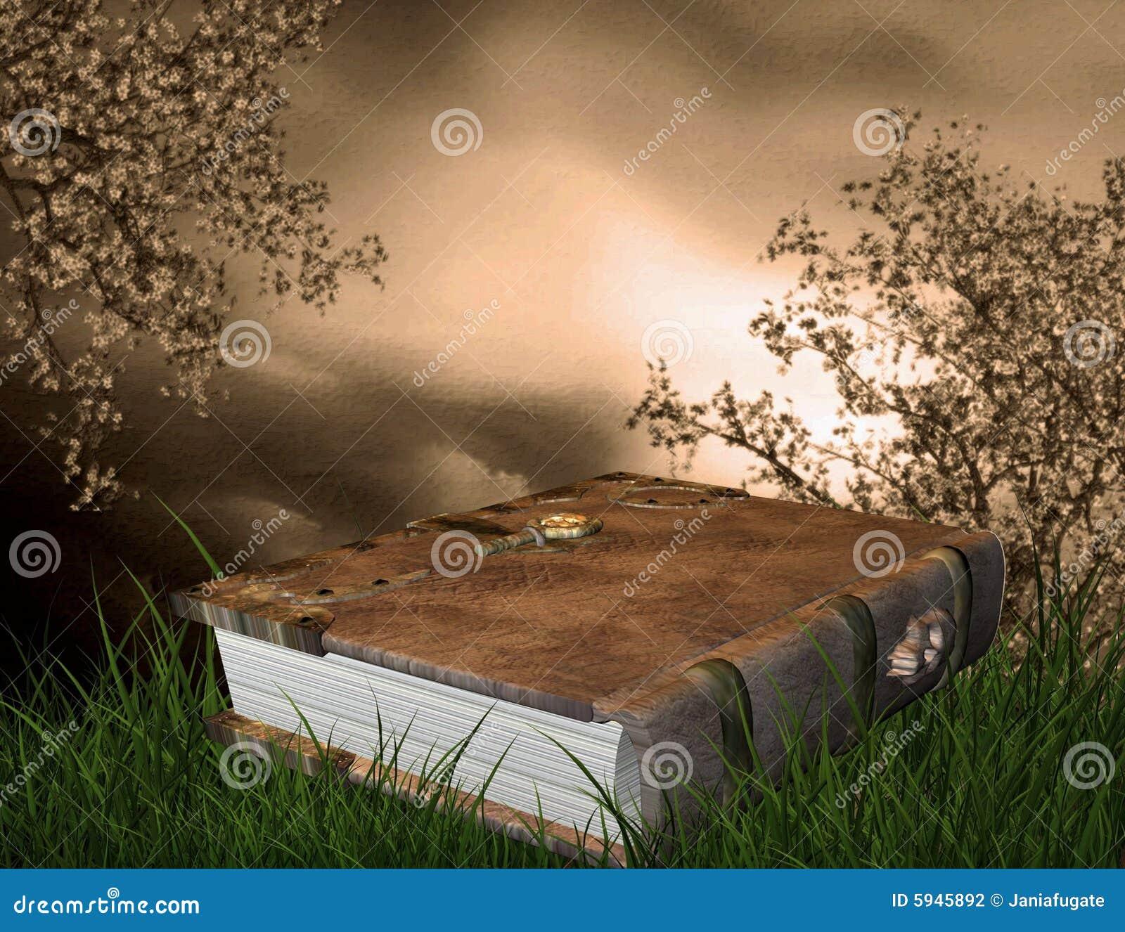 Het boek van Fairytale