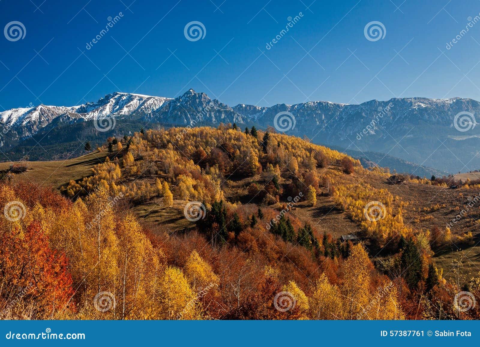 Het bos en de berg van de herfst