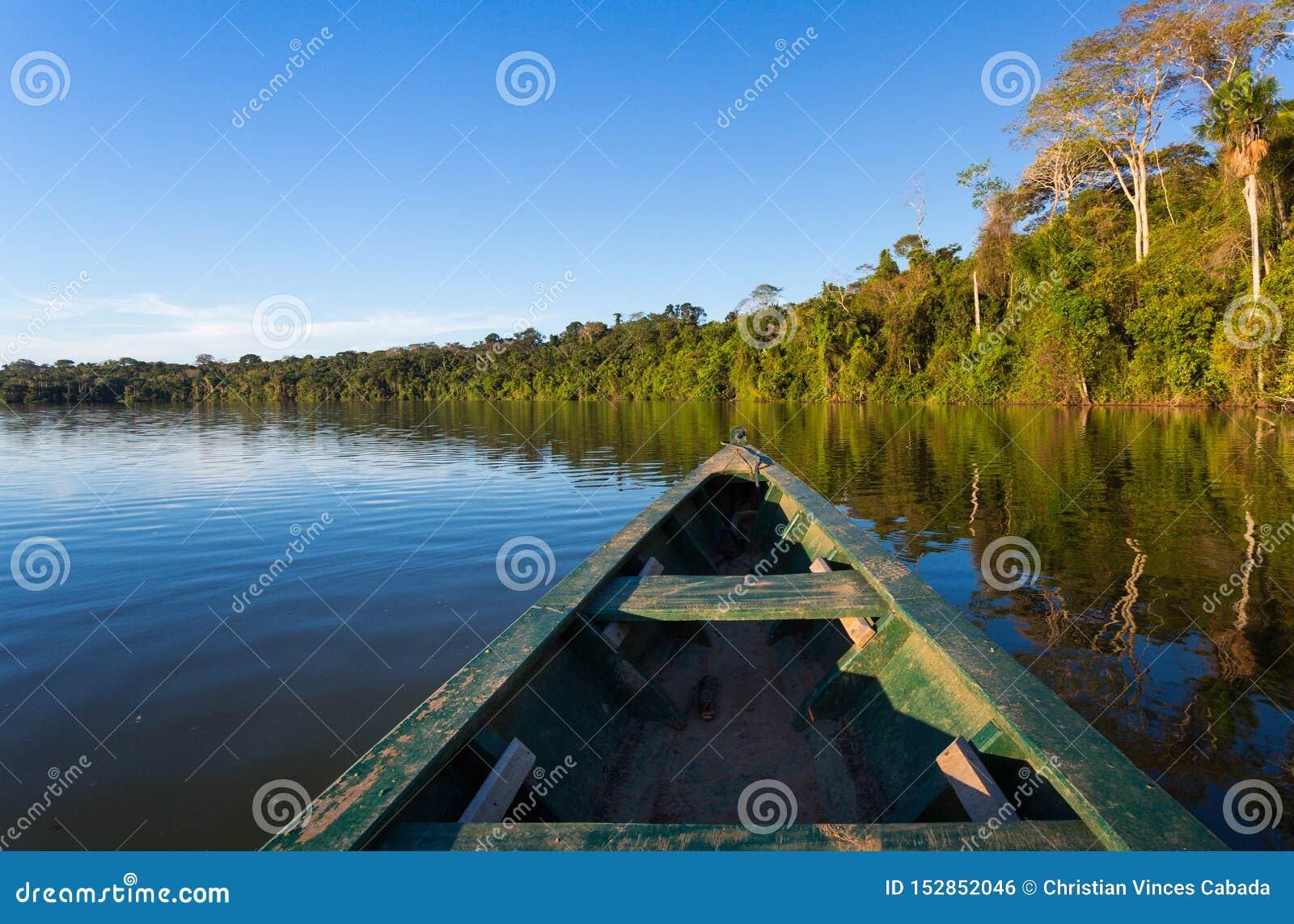 HET BOS VAN AMAZONIË VAN EEN BOOT
