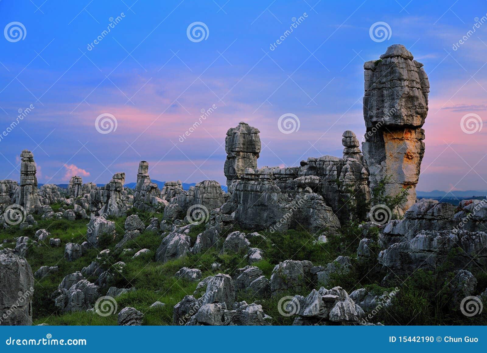 Het bos van de steen stock foto afbeelding bestaande uit aantrekkelijkheid 15442190 - Aperitief plateau huis van de wereld ...
