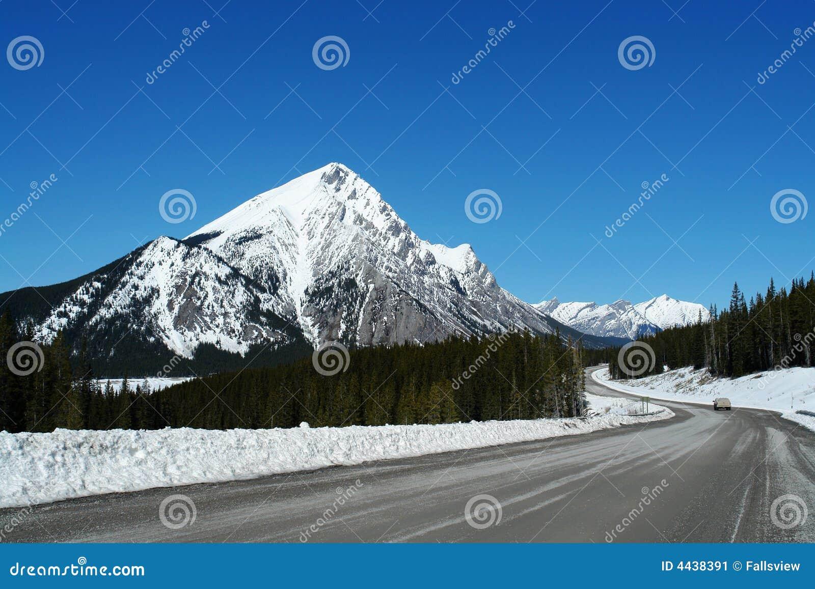 Het brede rijweg met mooi aangelegd landschap van de lente icefield