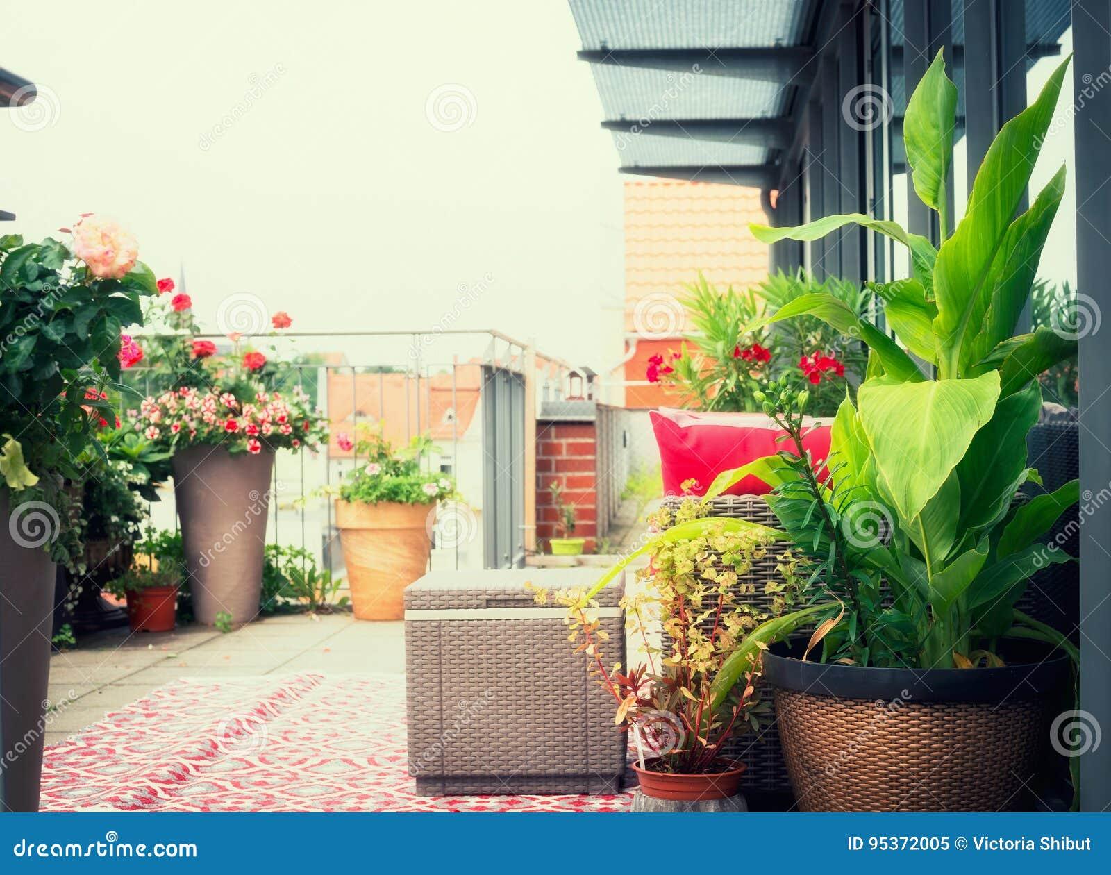 Het cannaterras bloeit potten op balkon of terras met