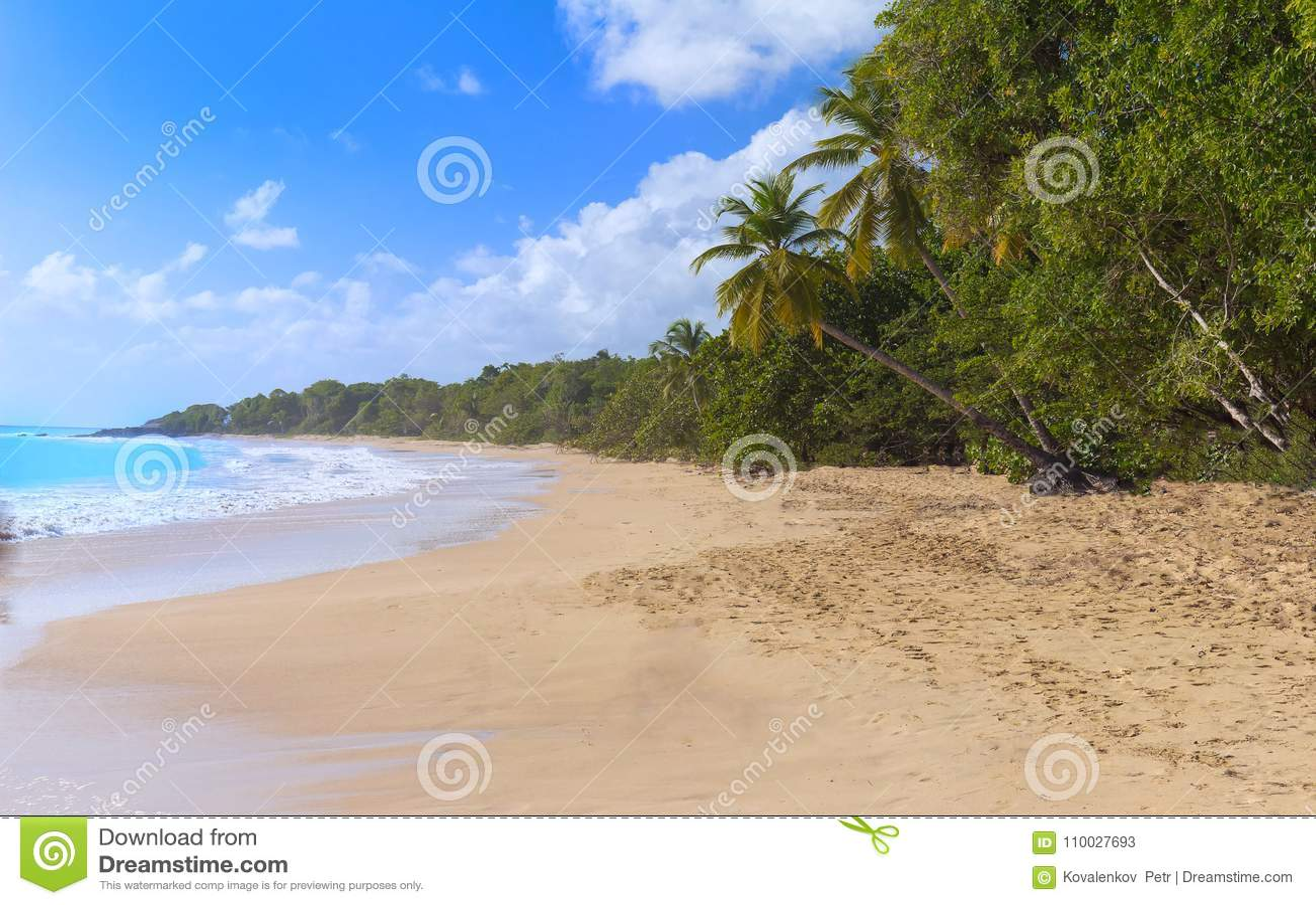 Het Caraïbische strand, het eiland van Martinique