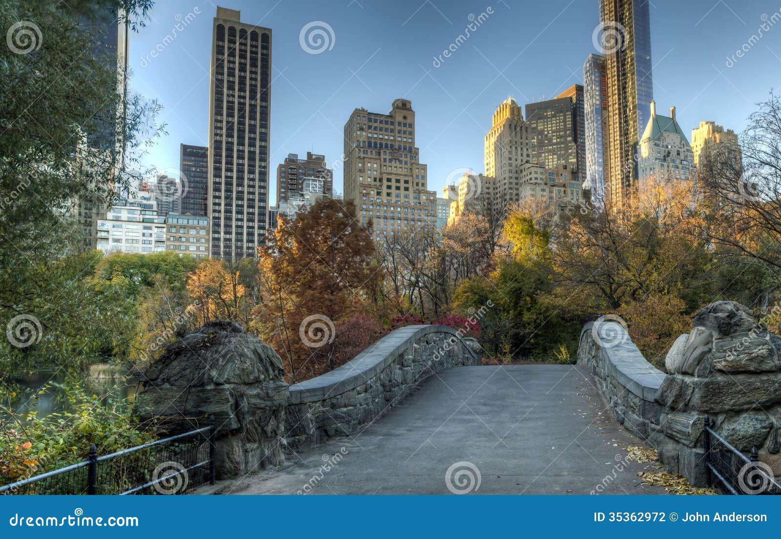 Het Central Park van de Gapstowbrug, de Stad van New York