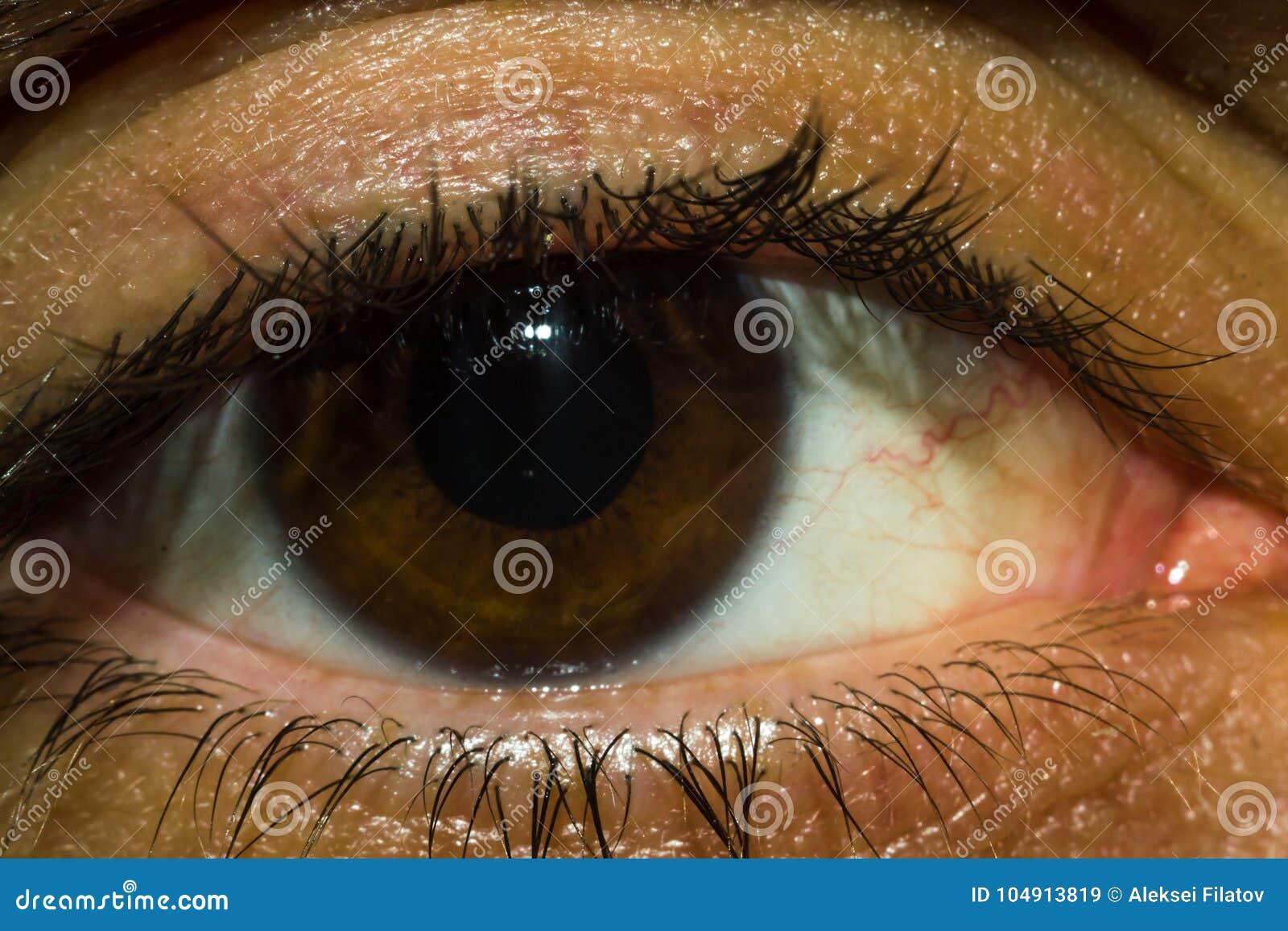 Het close-up van mensen` s ogen