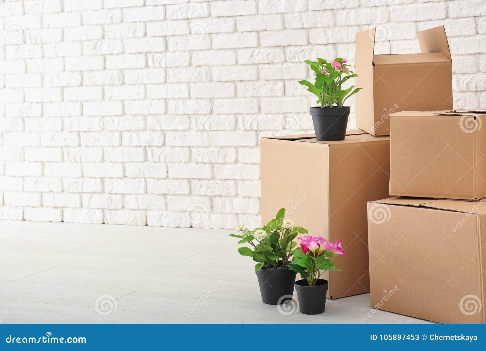 Het concept van het bewegingshuis Kartondozen en bezittingen