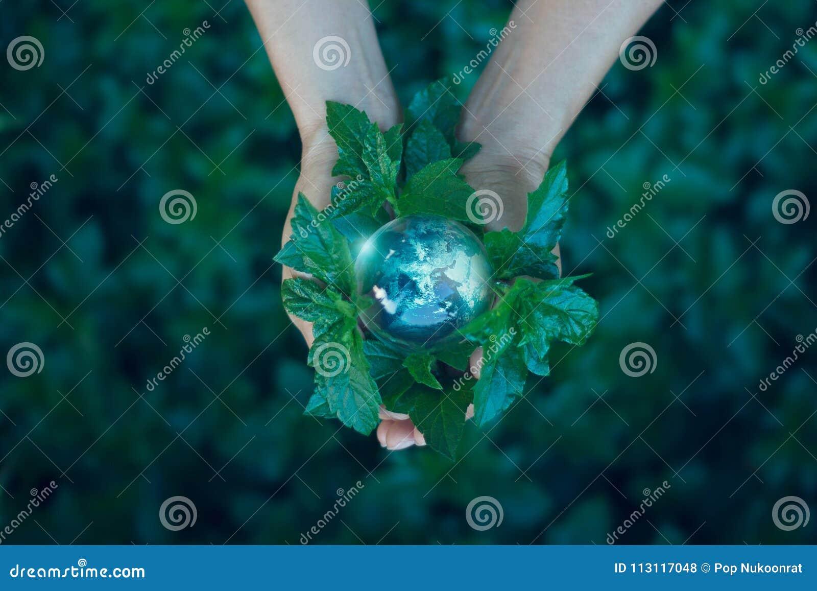 Het concept van de besparingsenergie, de aarde van de Handholding op groene aard
