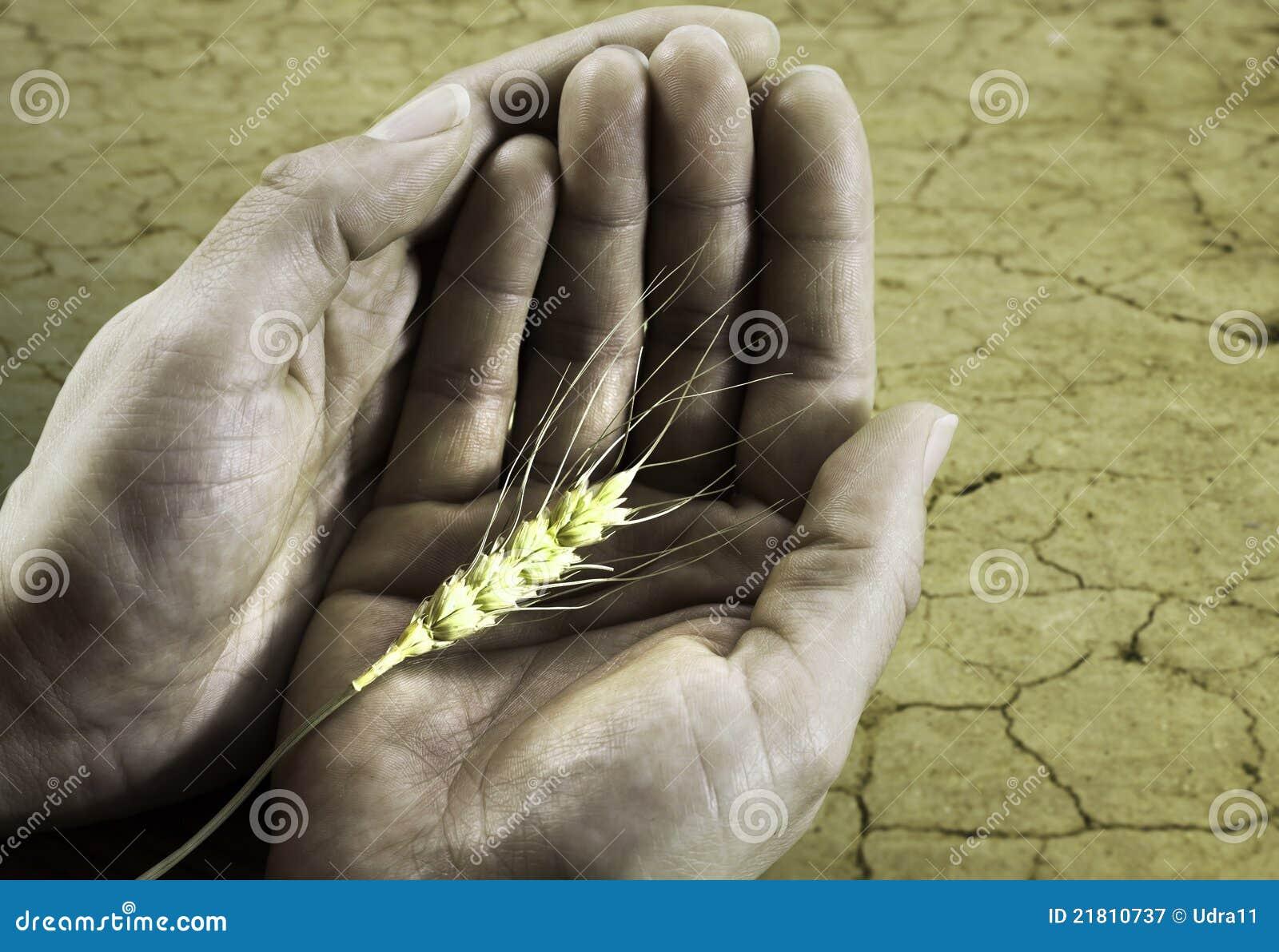 Het concept van de honger op de aarde en het geven handen