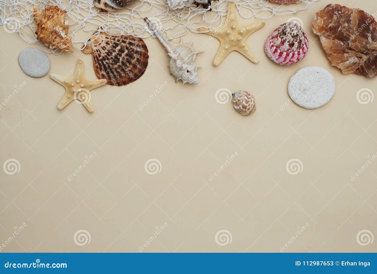 Het concept van de zomer en van de vakantie Mengeling van Shells en Stenen over Ivoorachtergrond met Exemplaarruimte voor Tekst H