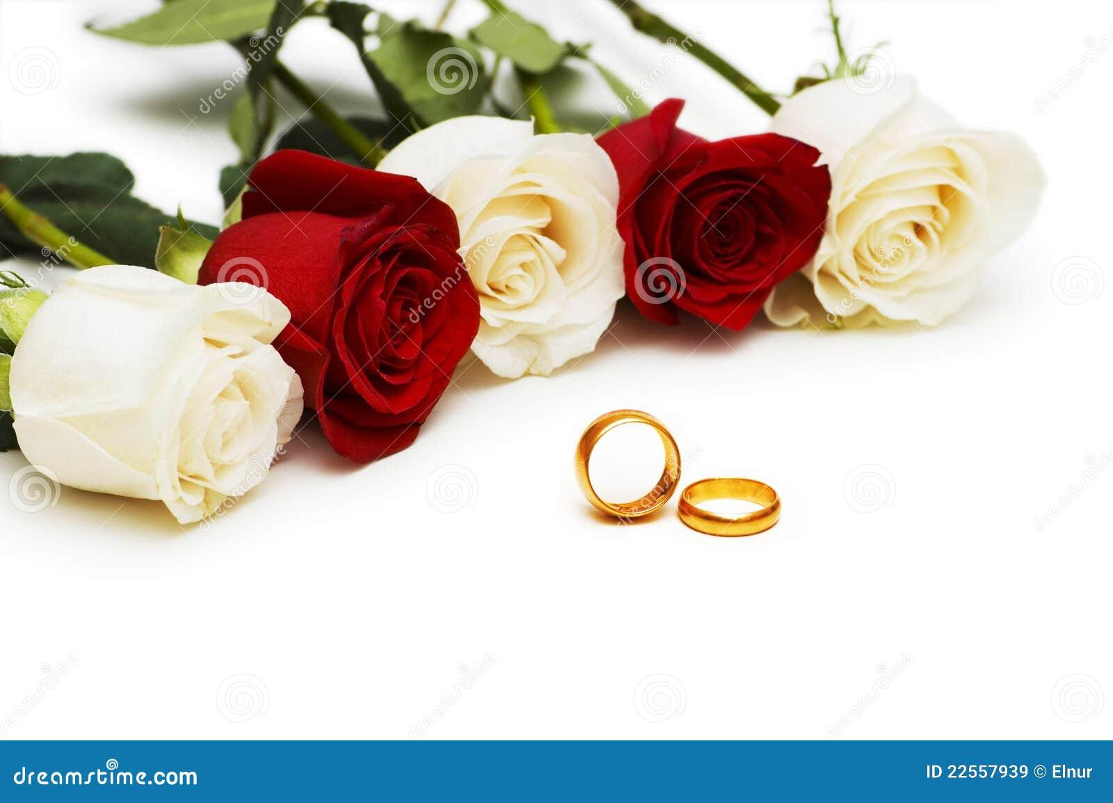 Het concept van huwelijk rozen en ringen stock