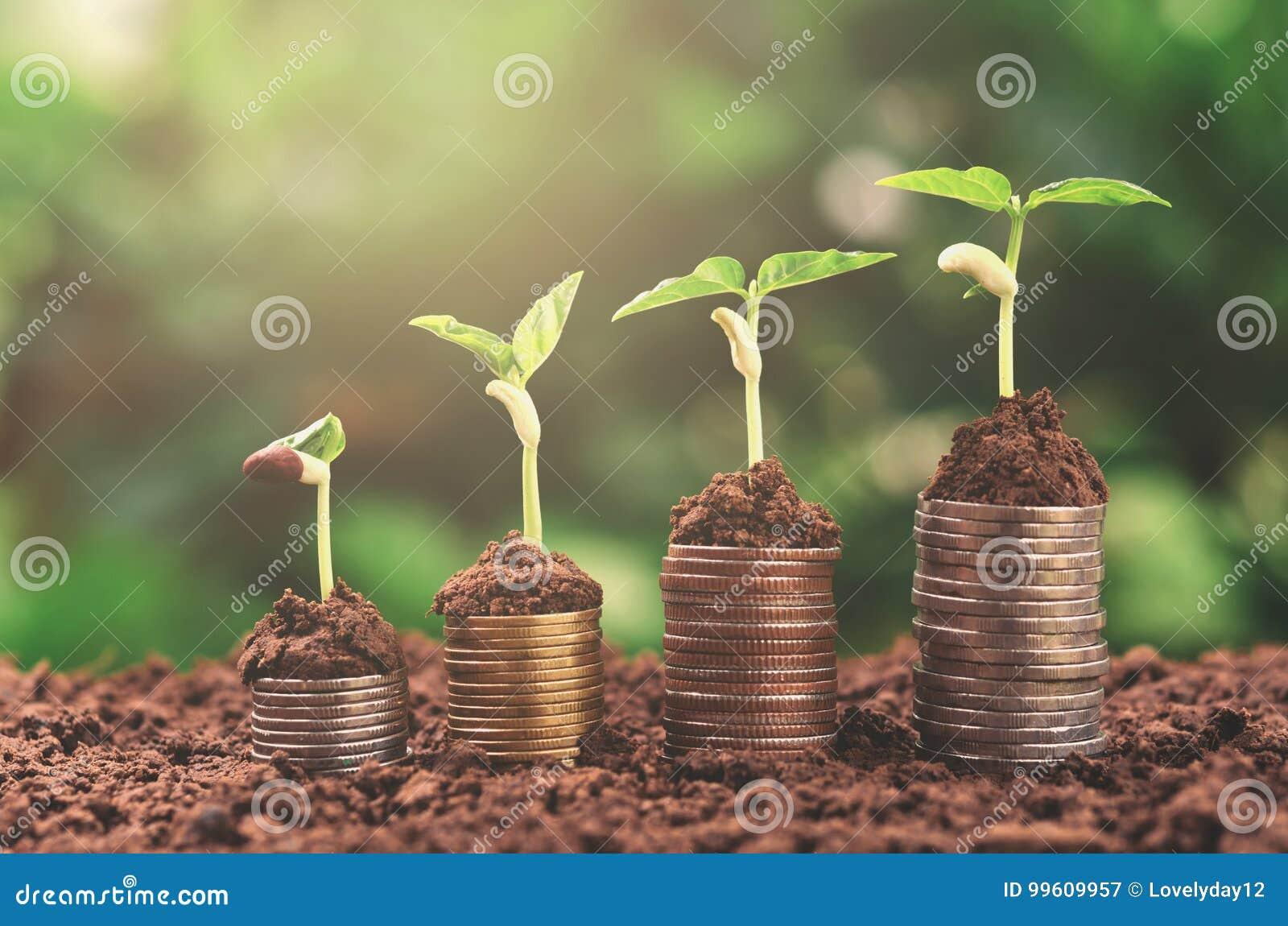 Het concepten van het bedrijfs installatiegeld groeiende financiën