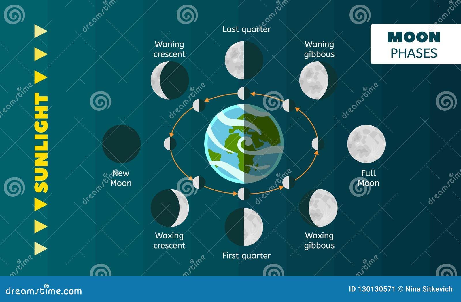 Het conceptenachtergrond van maanfasen, vlakke stijl
