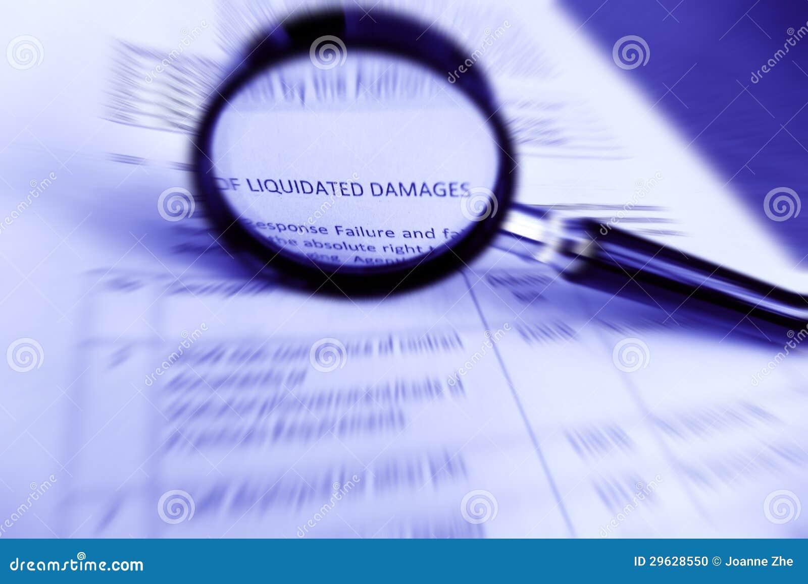 Het contract van de studie, de Geliquideerde specificaties van de Schade