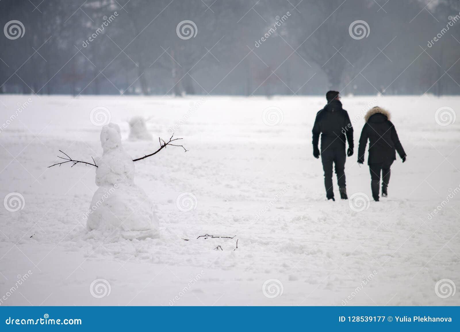 In het de winterpark