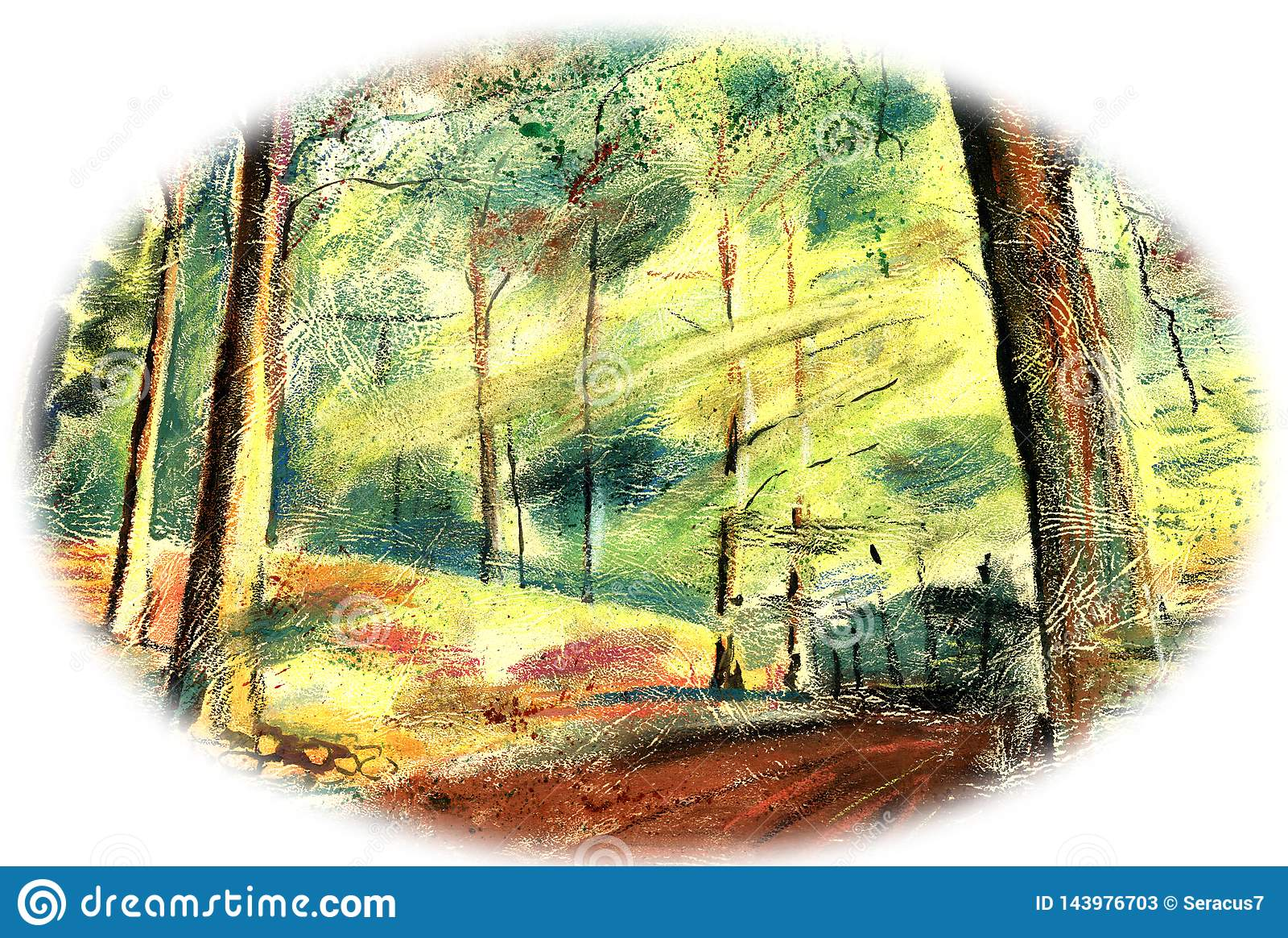 Het de zomerbos, de zon glanst door de bomen