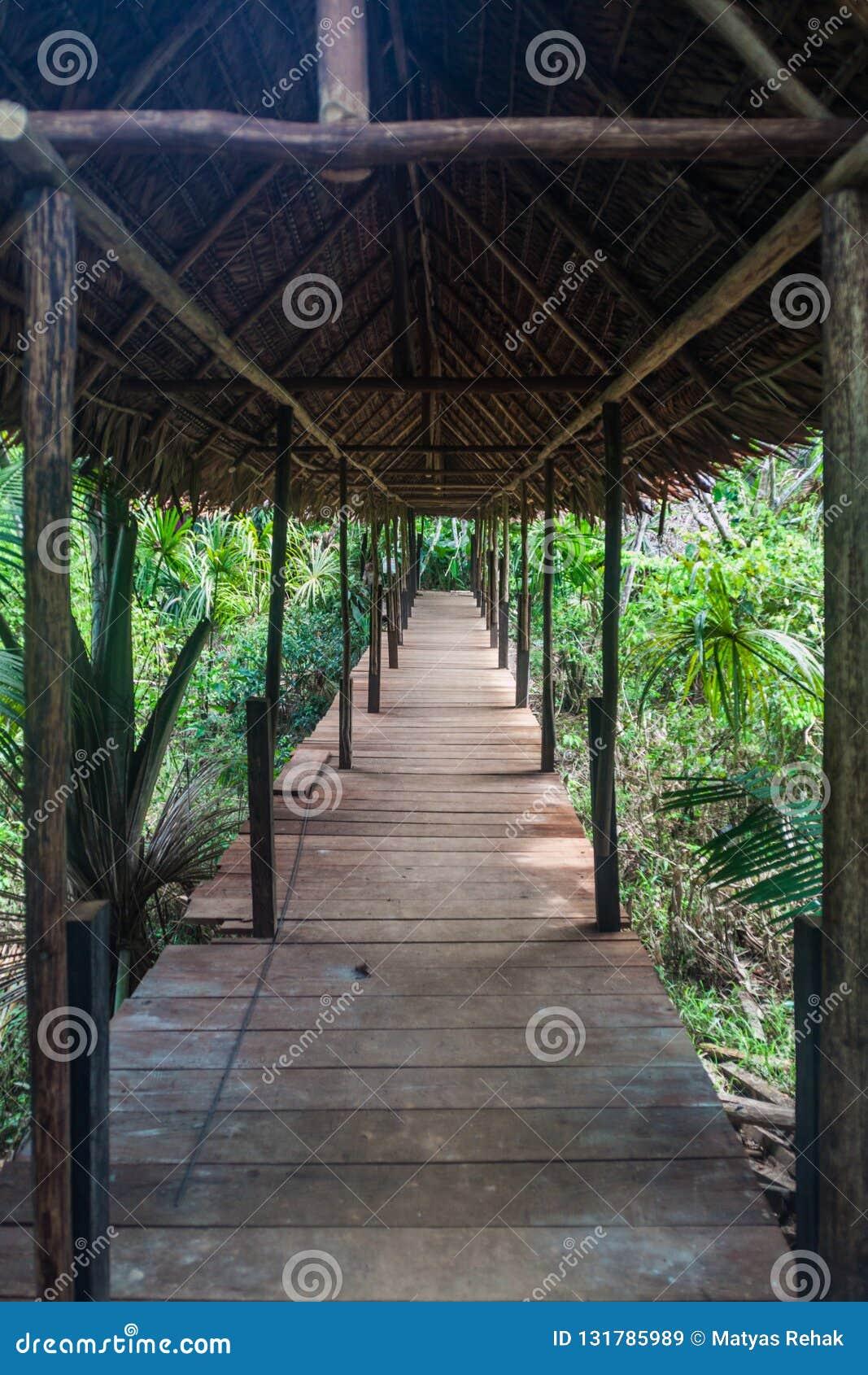 Het Dierlijke Weeshuis Pilpintuwasi van Amazonië