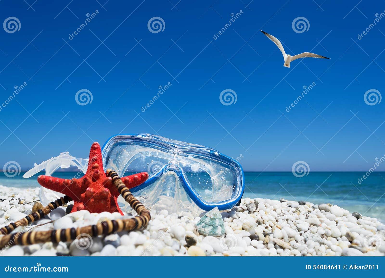 Het duiken masker onder een vliegende zeemeeuw