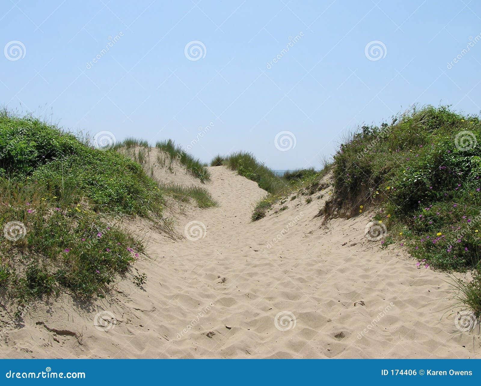 Het Duin van het zand