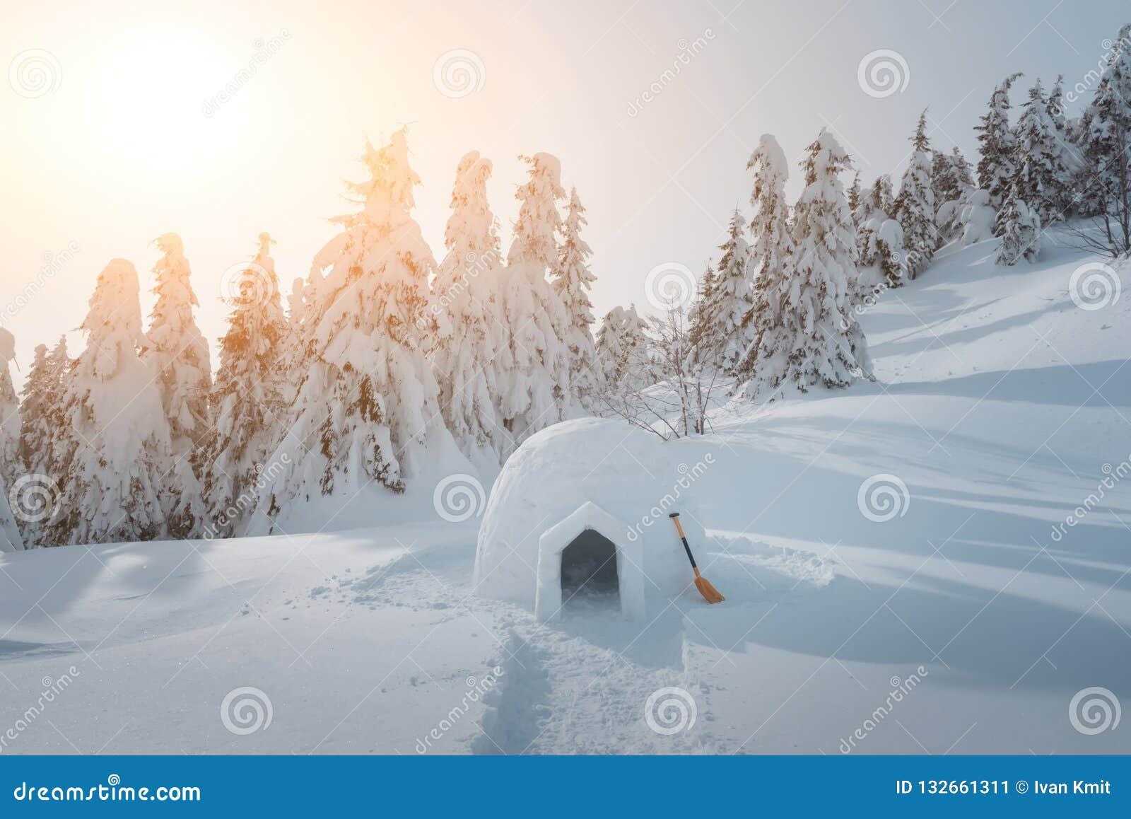 Het echte huis van de sneeuwiglo in de de winter Karpatische bergen
