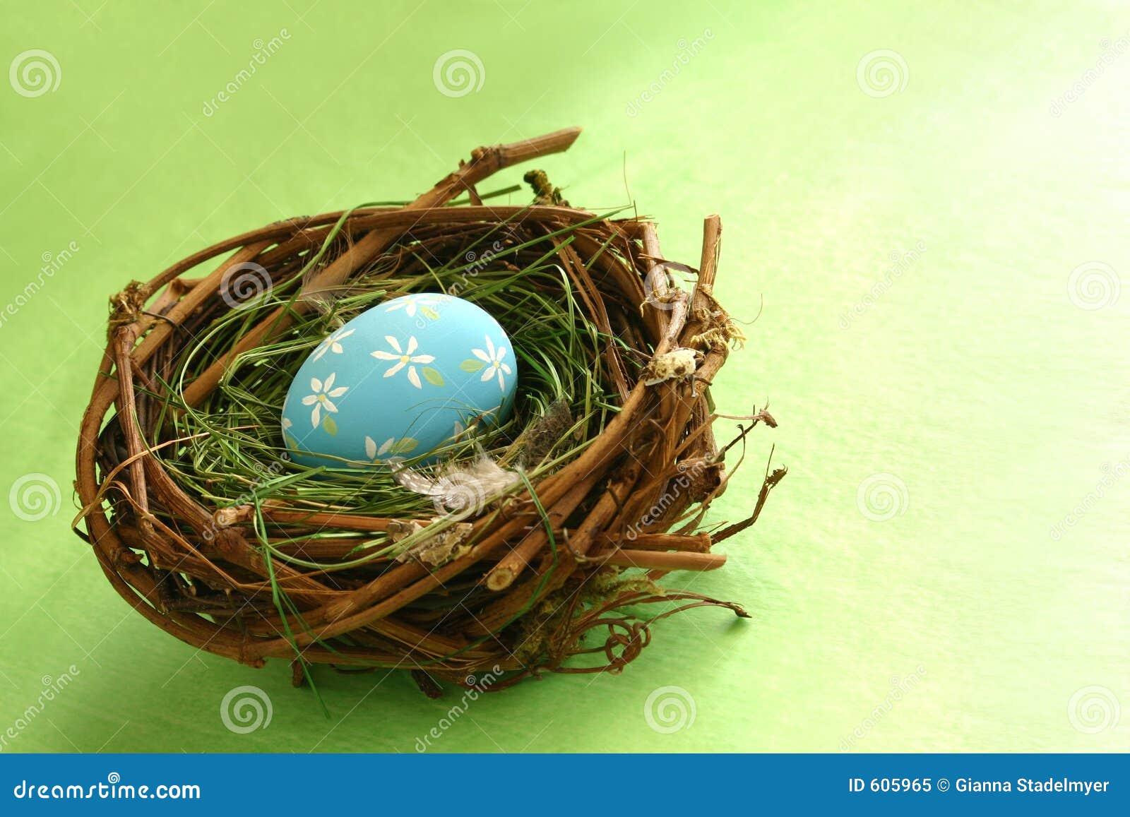 Het Ei van de lente in Nest