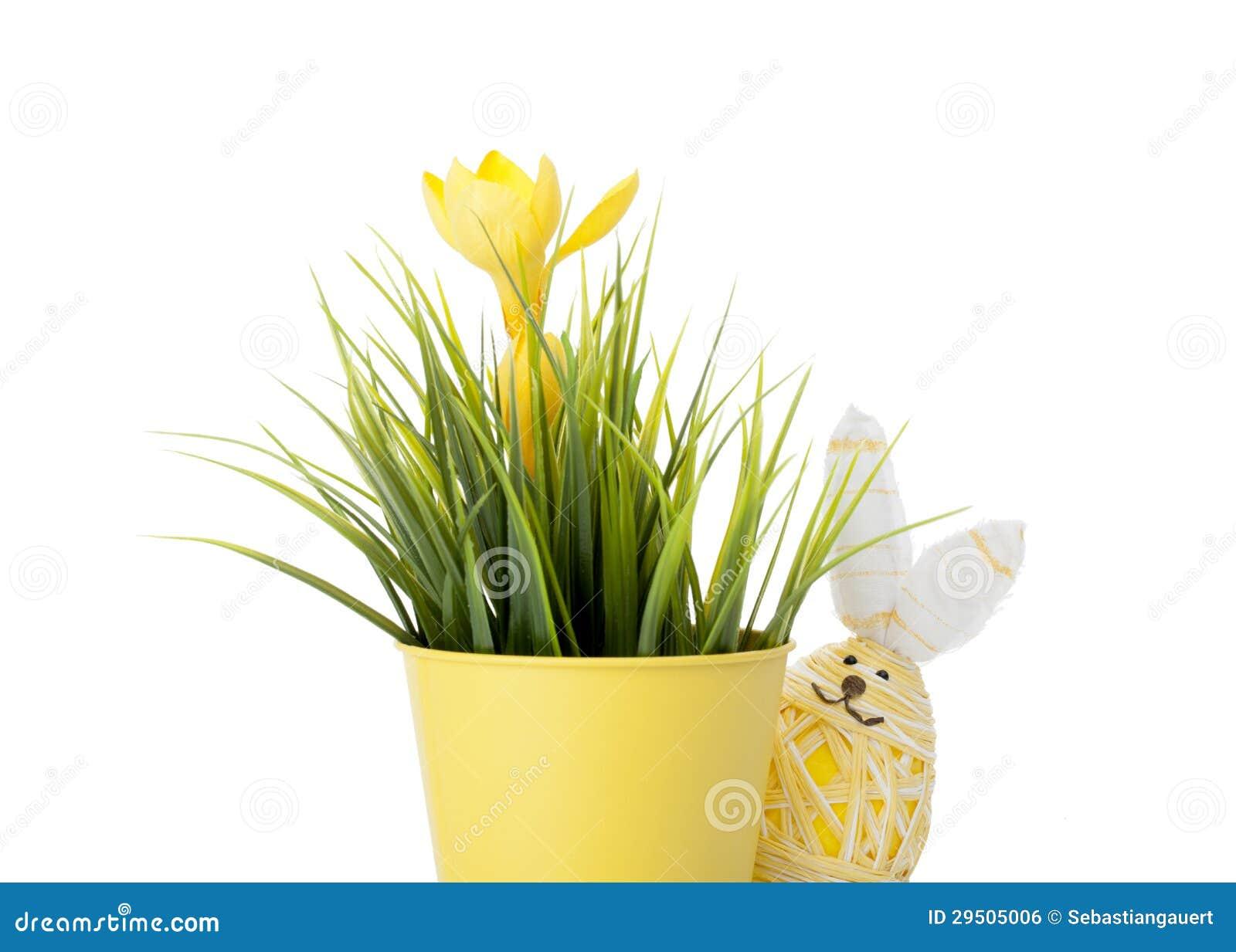 Het ei van de paashaas met de lentebloem