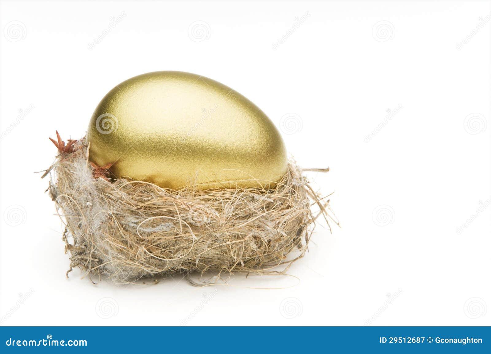 Het ei van het nest