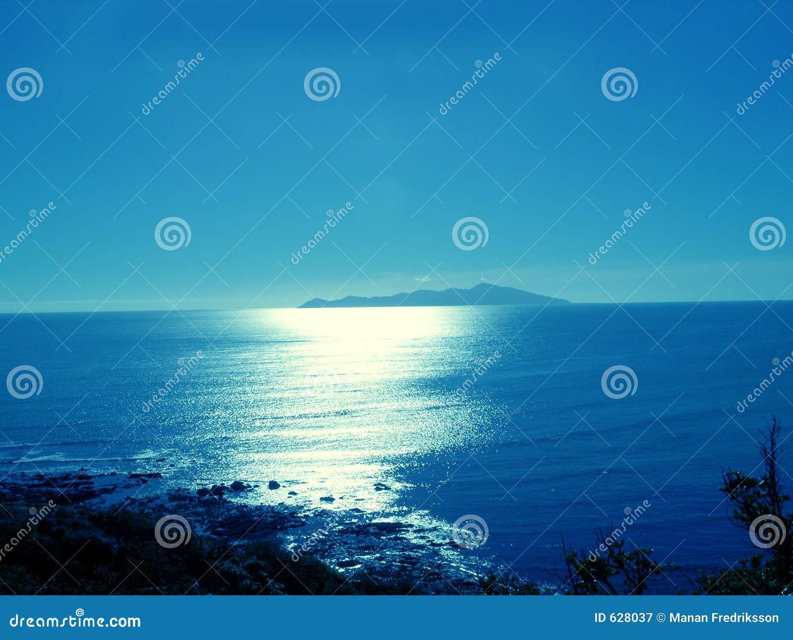 Het Eiland van Kapiti