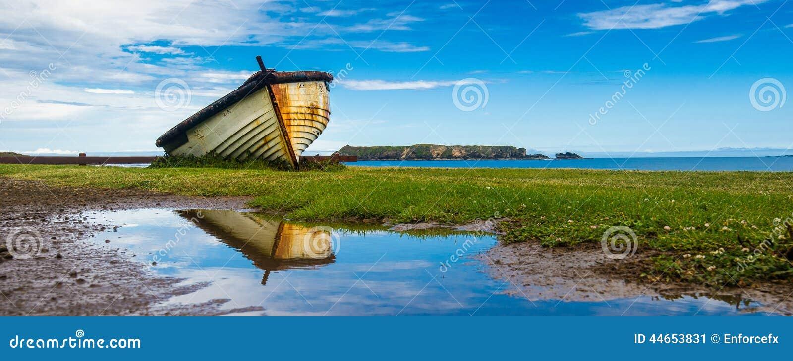 Het Eilandaansteker van Norfolk