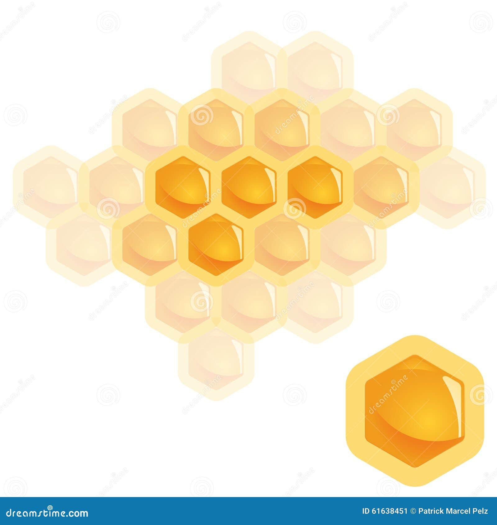 Het element van de honingskam