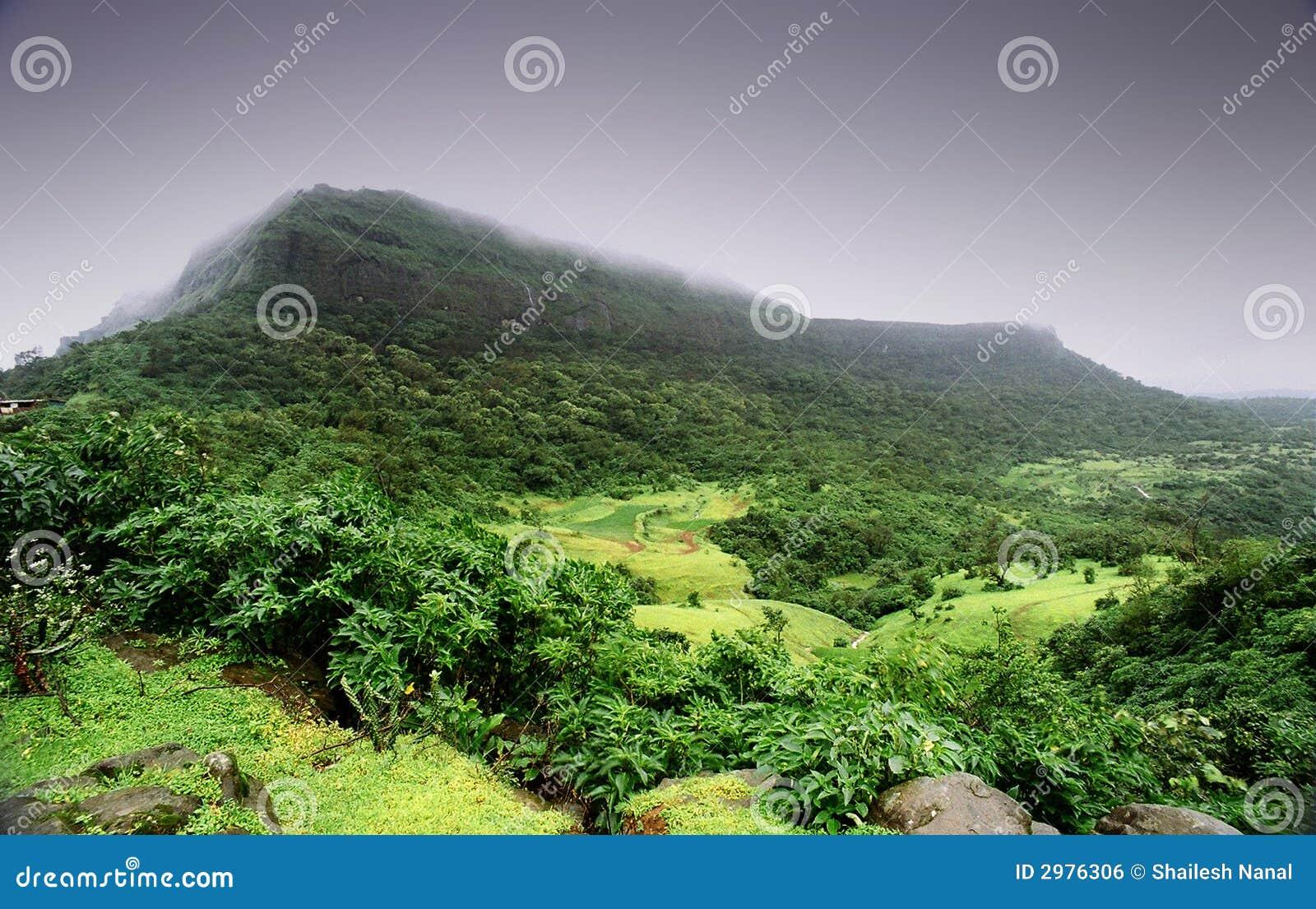 Het enorme Landschap van de Moesson