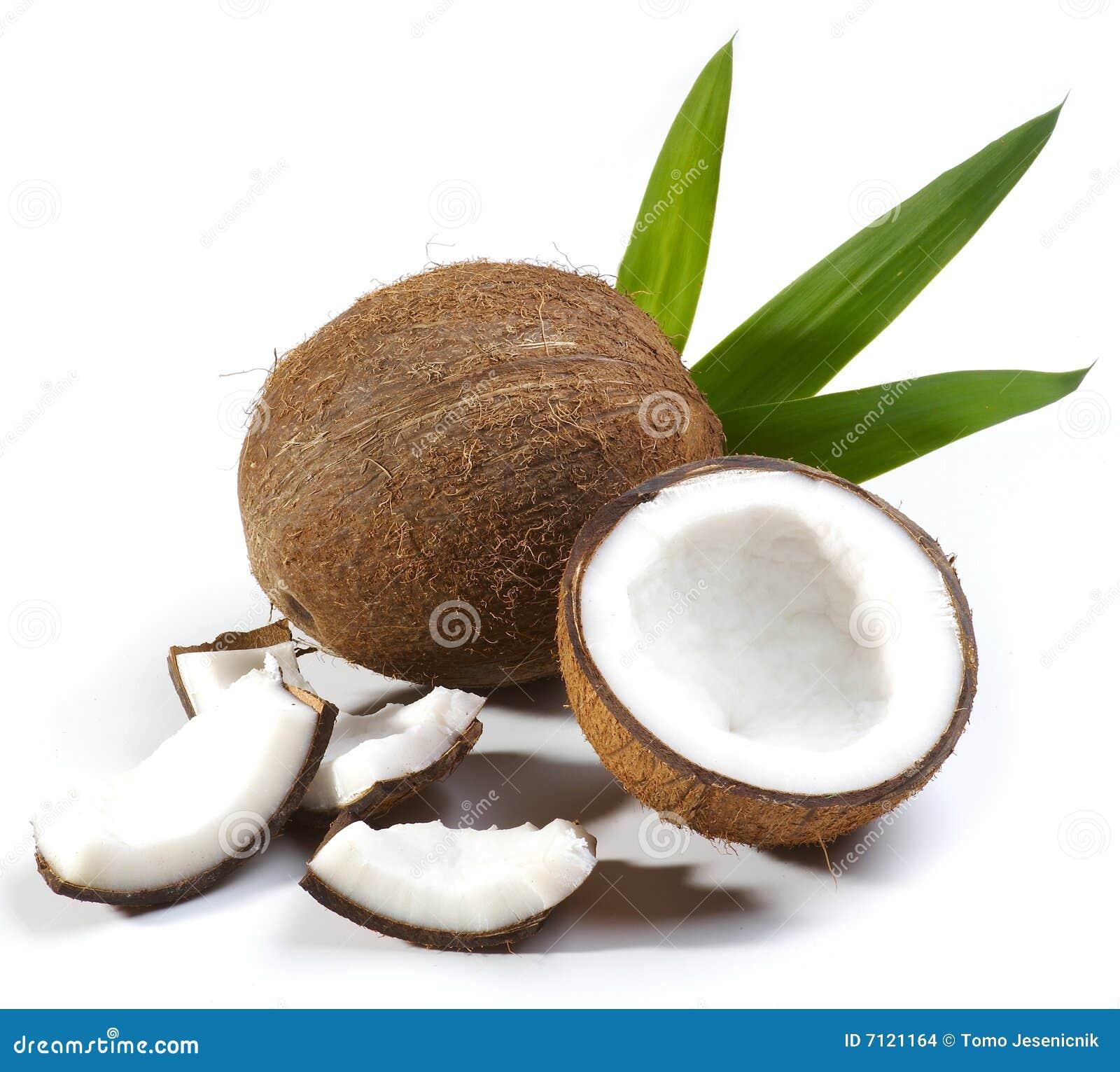 Het fruit van de kokosnoot