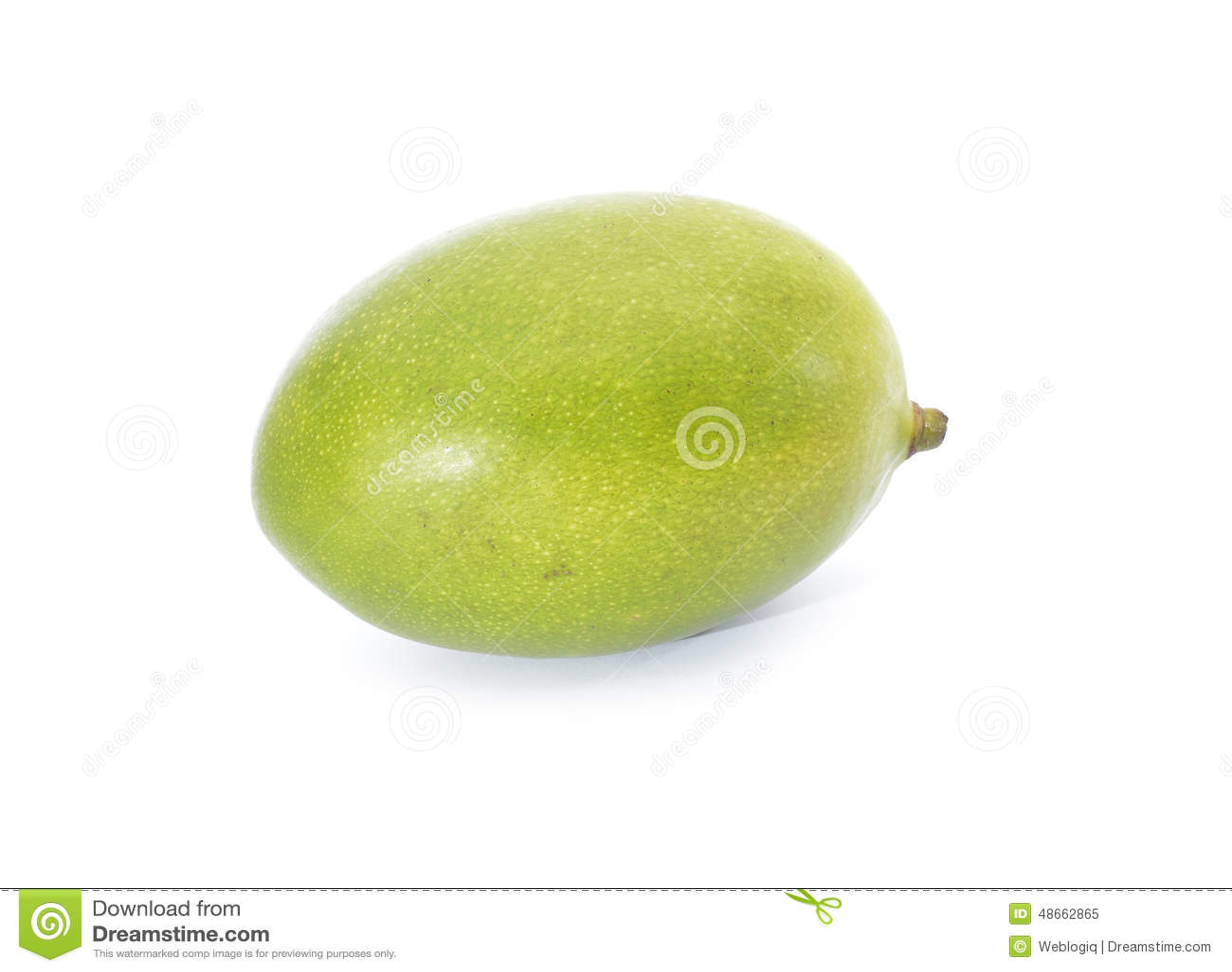 Het fruit van de mango